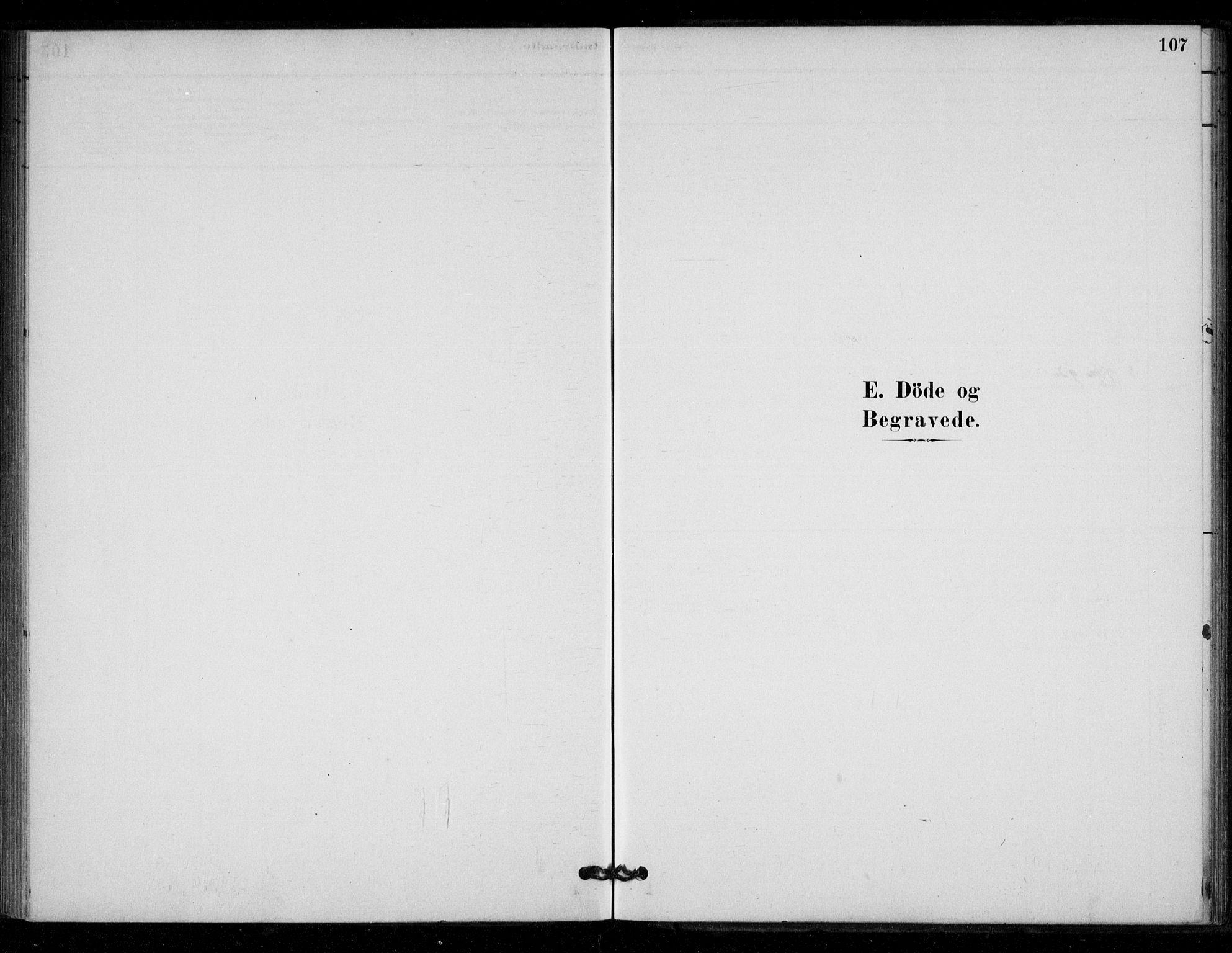 SAT, Ministerialprotokoller, klokkerbøker og fødselsregistre - Sør-Trøndelag, 670/L0836: Ministerialbok nr. 670A01, 1879-1904, s. 107