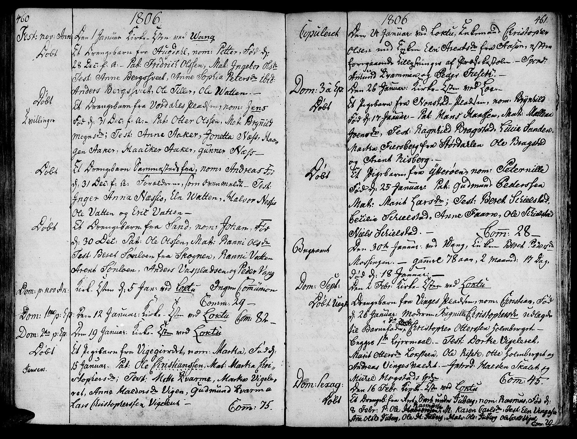 SAT, Ministerialprotokoller, klokkerbøker og fødselsregistre - Nord-Trøndelag, 713/L0110: Ministerialbok nr. 713A02, 1778-1811, s. 460-461