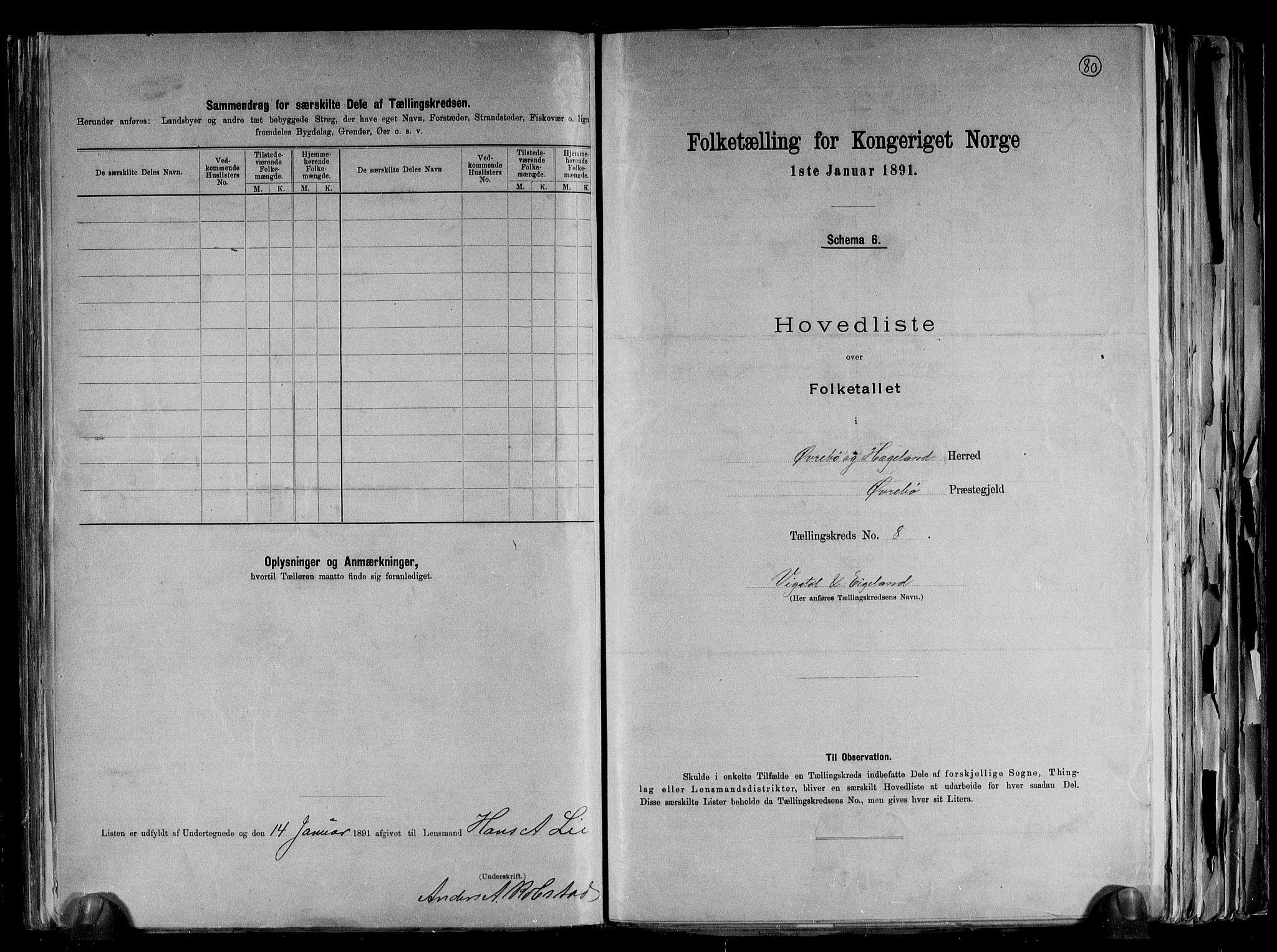 RA, Folketelling 1891 for 1016 Øvrebø og Hægeland herred, 1891, s. 20