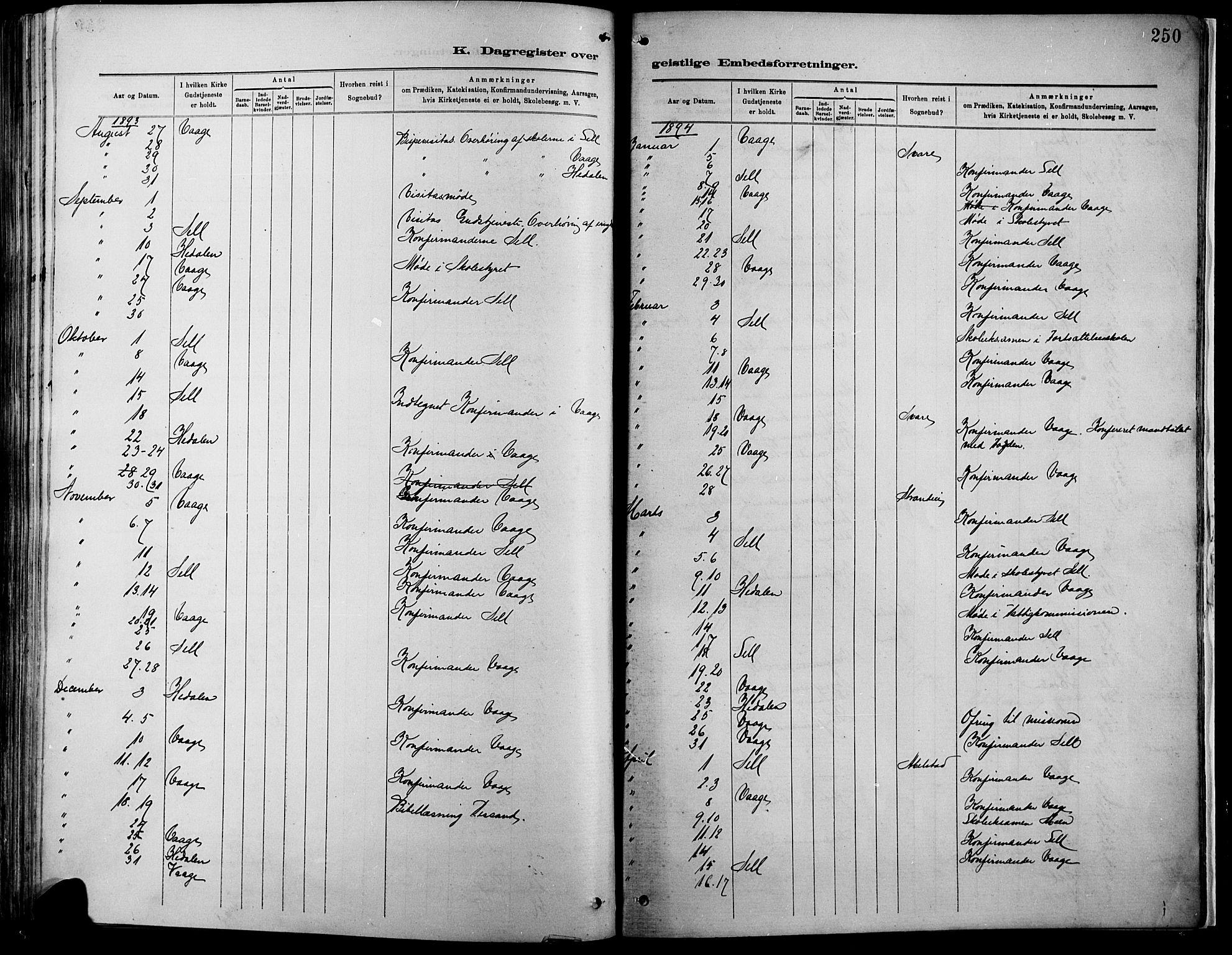 SAH, Vågå prestekontor, Ministerialbok nr. 9, 1886-1904, s. 250