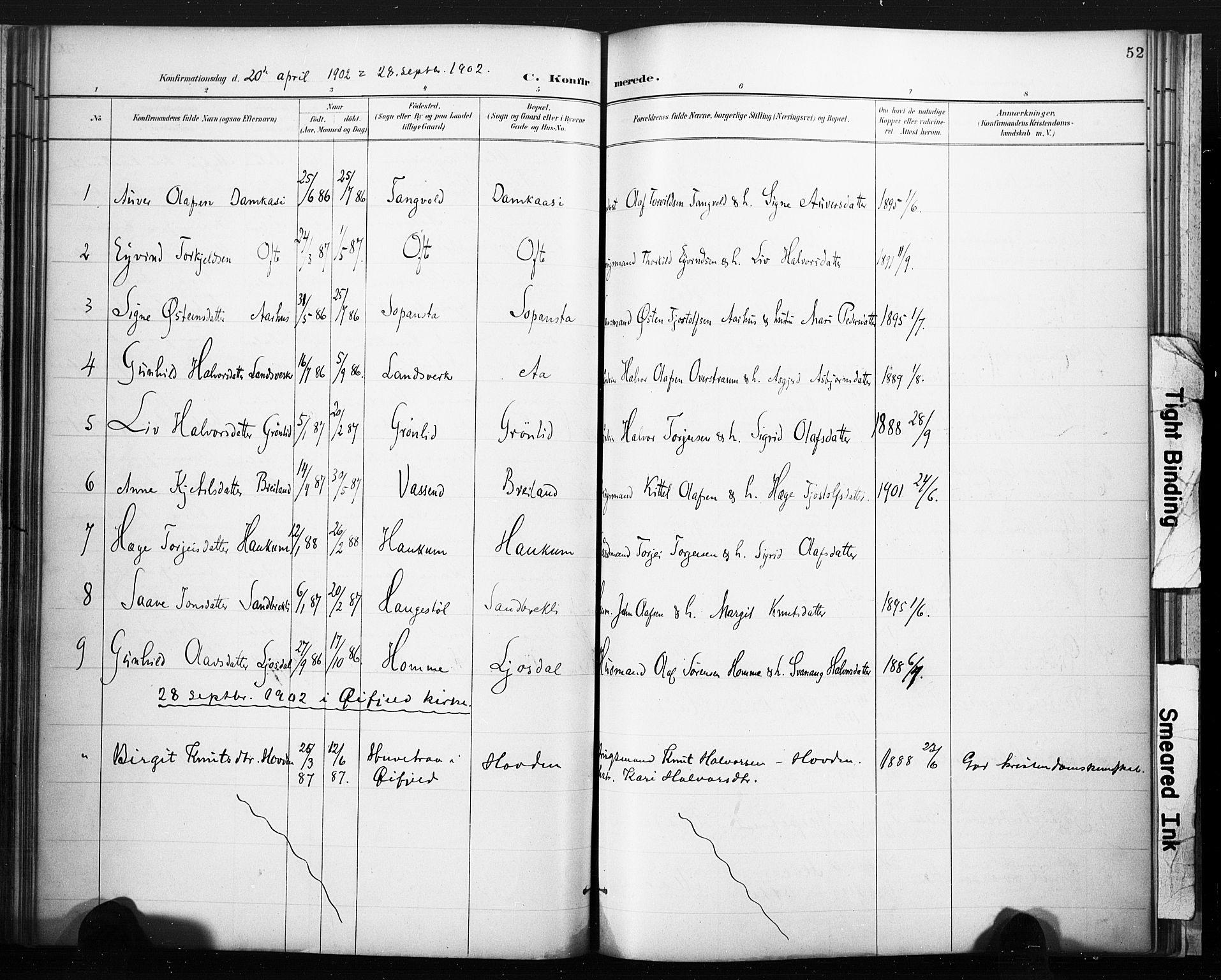 SAKO, Lårdal kirkebøker, F/Fc/L0002: Ministerialbok nr. III 2, 1887-1906, s. 52