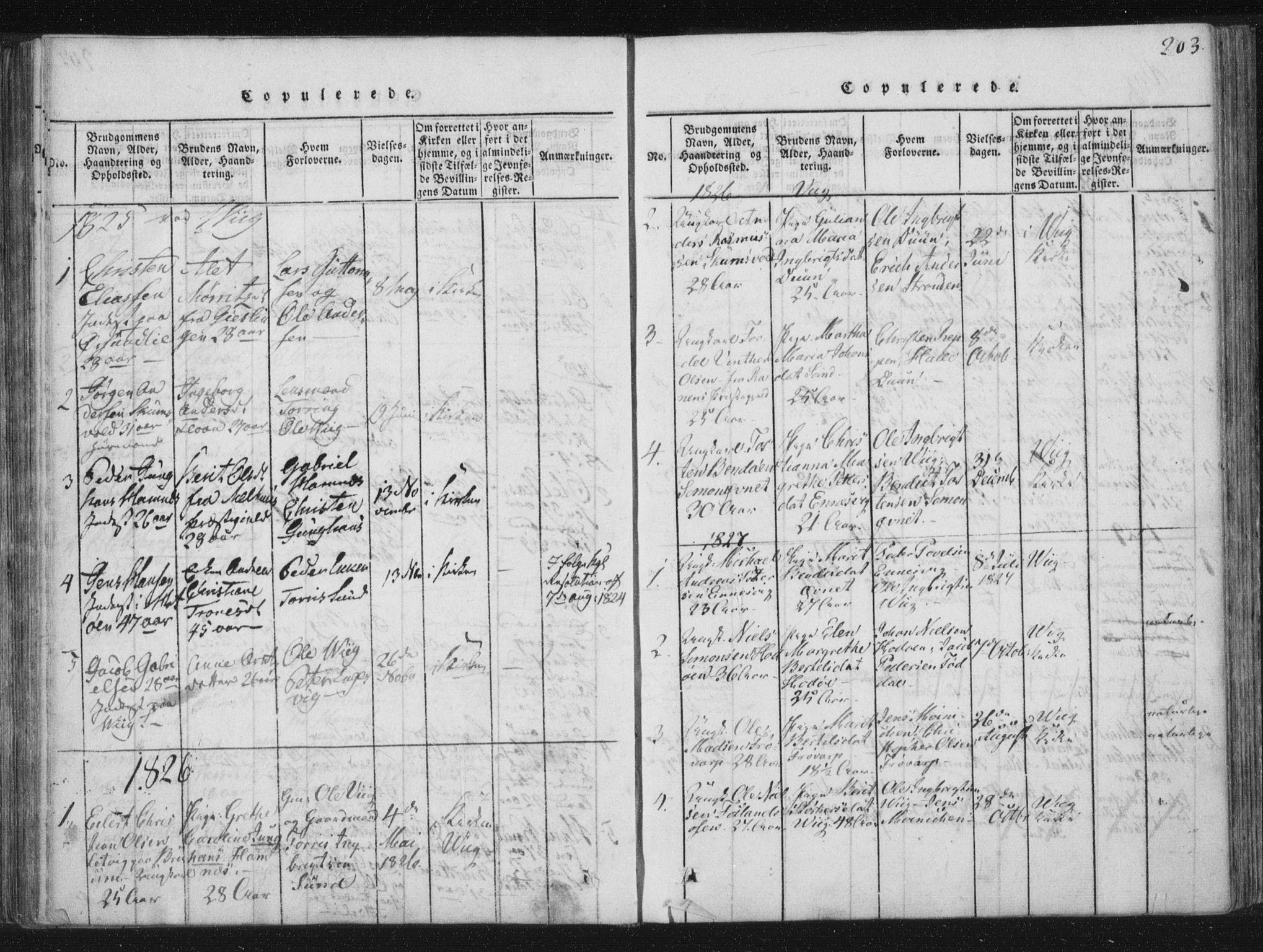 SAT, Ministerialprotokoller, klokkerbøker og fødselsregistre - Nord-Trøndelag, 773/L0609: Ministerialbok nr. 773A03 /2, 1815-1830, s. 203