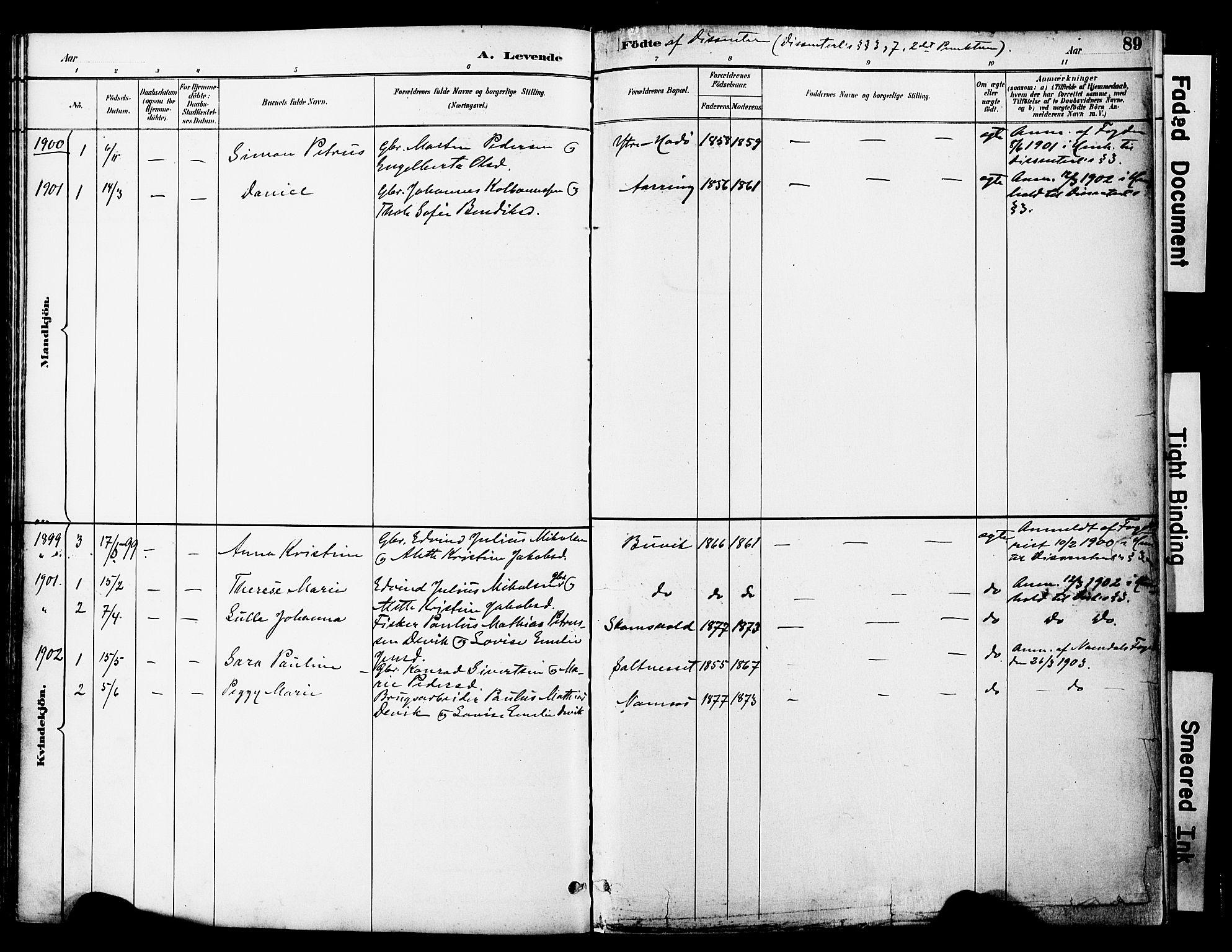 SAT, Ministerialprotokoller, klokkerbøker og fødselsregistre - Nord-Trøndelag, 774/L0628: Ministerialbok nr. 774A02, 1887-1903, s. 89