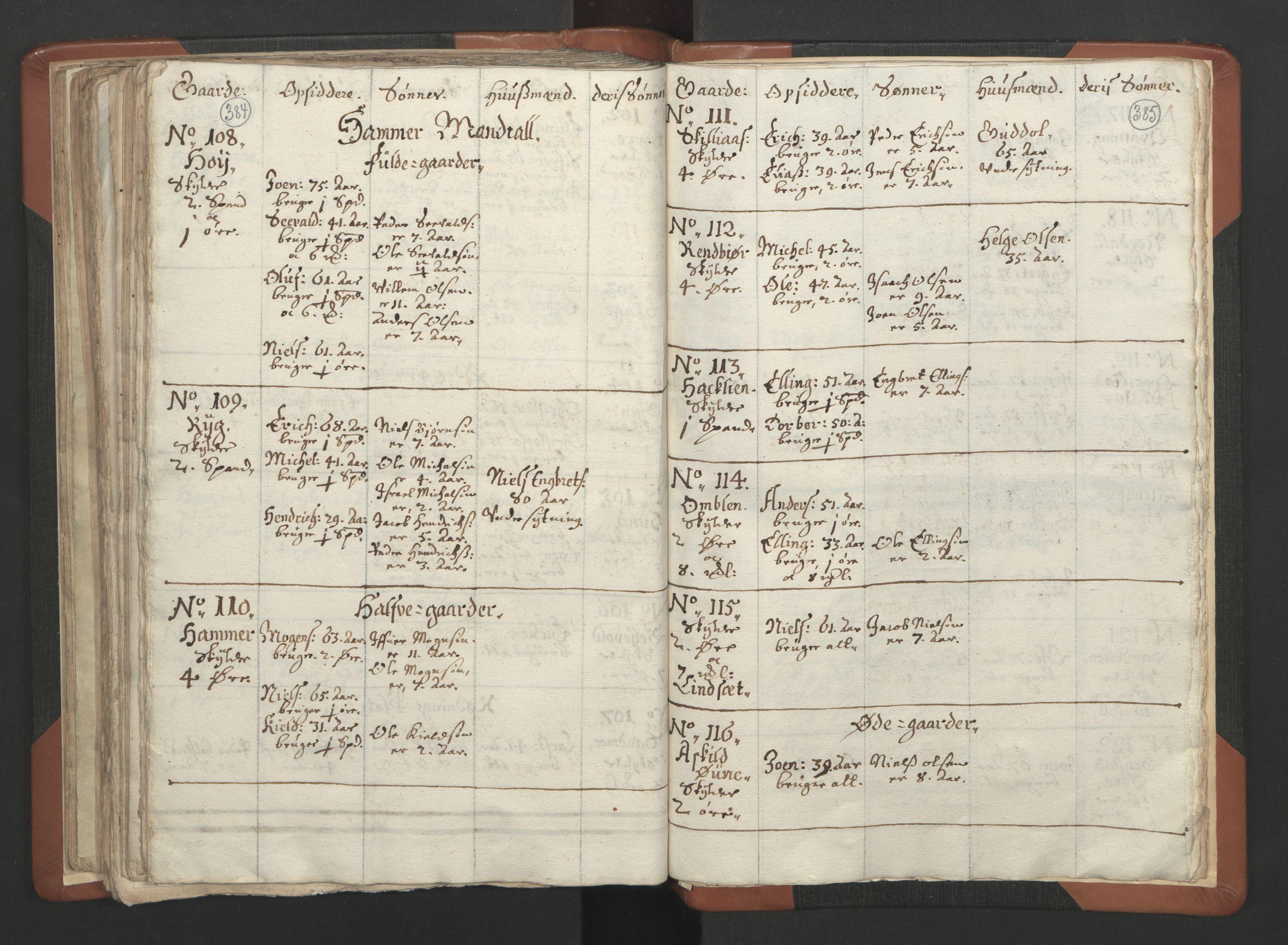 RA, Sogneprestenes manntall 1664-1666, nr. 34: Namdal prosti, 1664-1666, s. 384-385