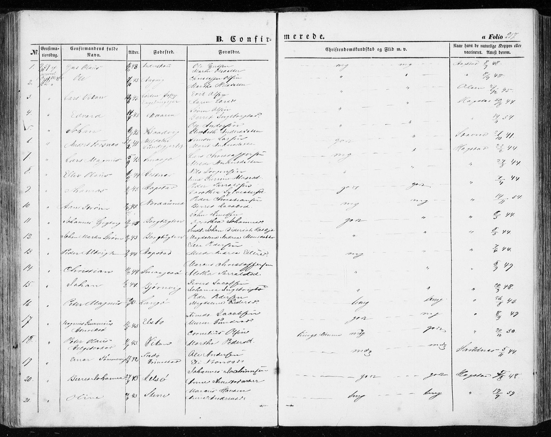 SAT, Ministerialprotokoller, klokkerbøker og fødselsregistre - Sør-Trøndelag, 634/L0530: Ministerialbok nr. 634A06, 1852-1860, s. 217