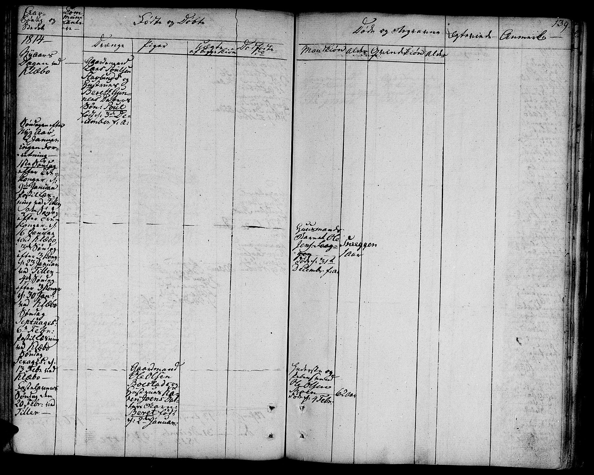 SAT, Ministerialprotokoller, klokkerbøker og fødselsregistre - Sør-Trøndelag, 618/L0438: Ministerialbok nr. 618A03, 1783-1815, s. 139