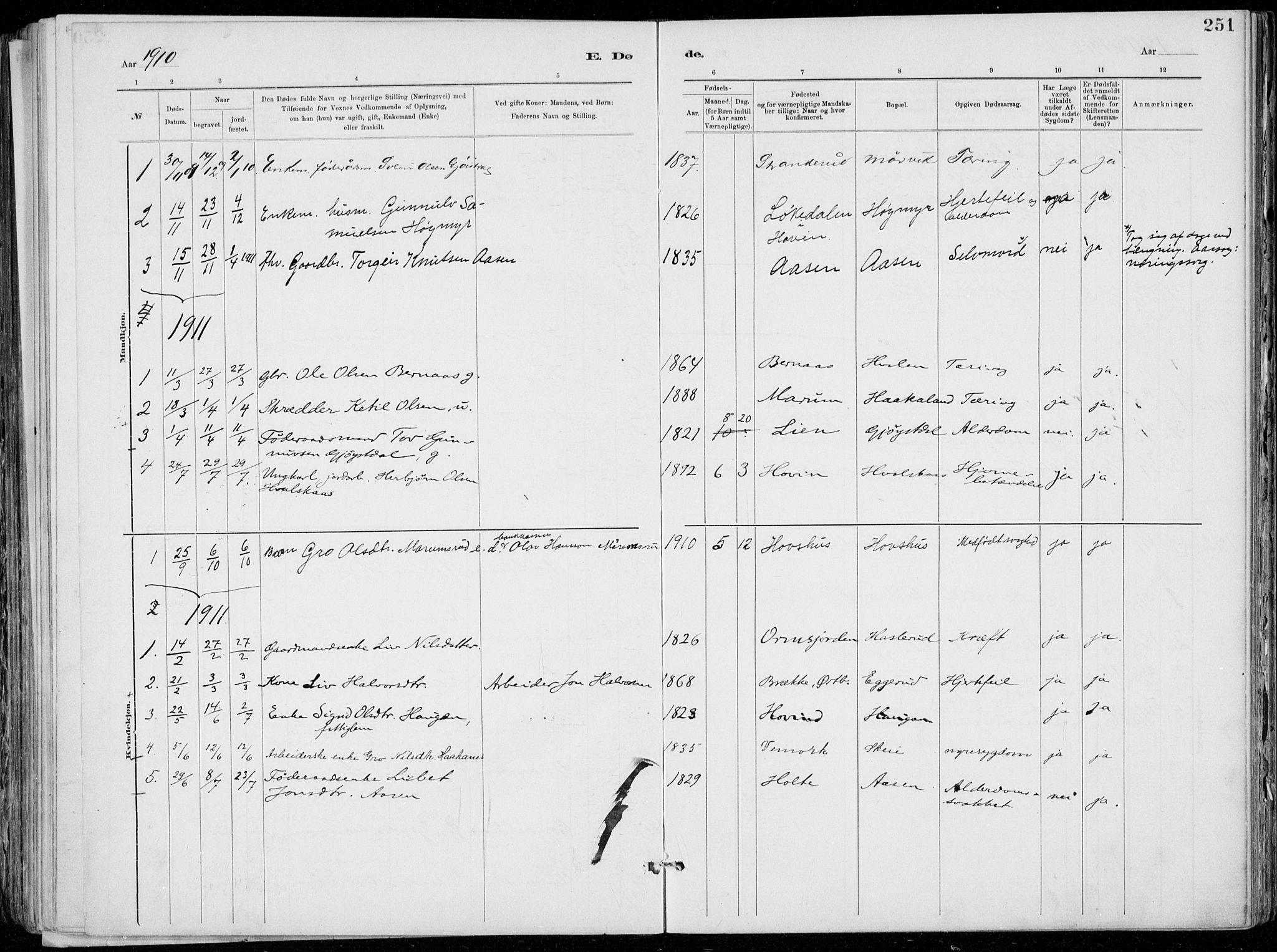 SAKO, Tinn kirkebøker, F/Fa/L0007: Ministerialbok nr. I 7, 1878-1922, s. 251