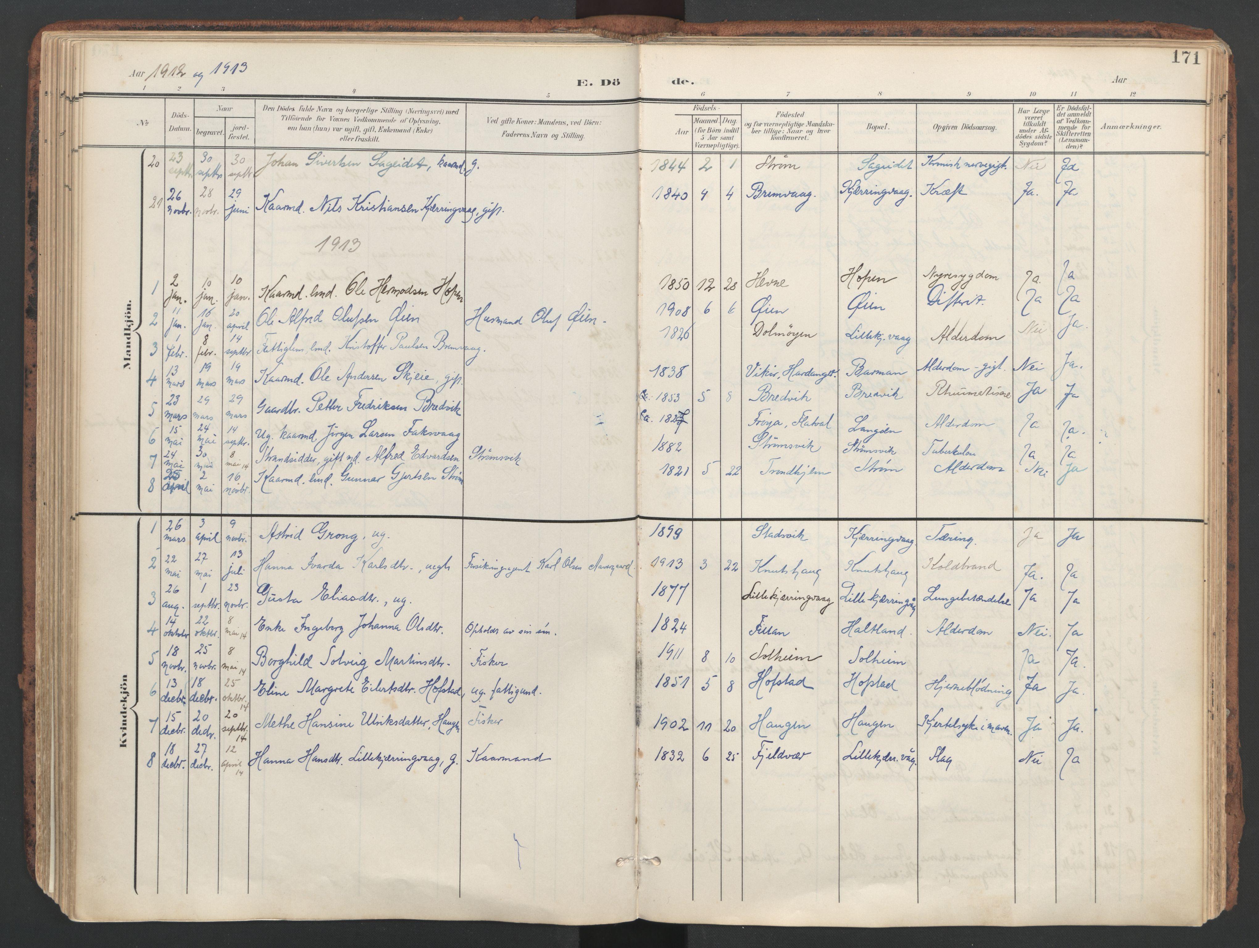 SAT, Ministerialprotokoller, klokkerbøker og fødselsregistre - Sør-Trøndelag, 634/L0537: Ministerialbok nr. 634A13, 1896-1922, s. 171