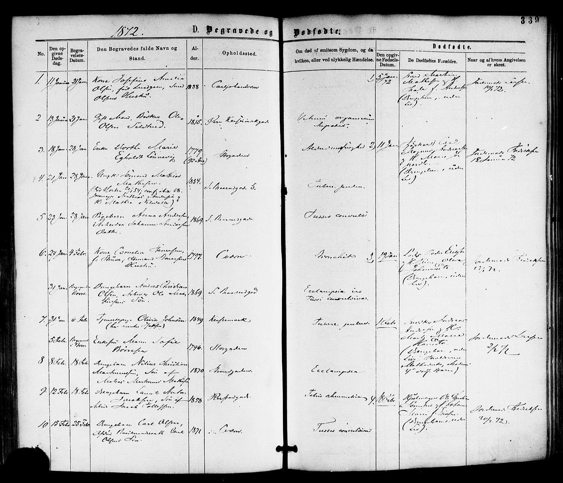 SAKO, Horten kirkebøker, F/Fa/L0002: Ministerialbok nr. 2, 1872-1877, s. 339