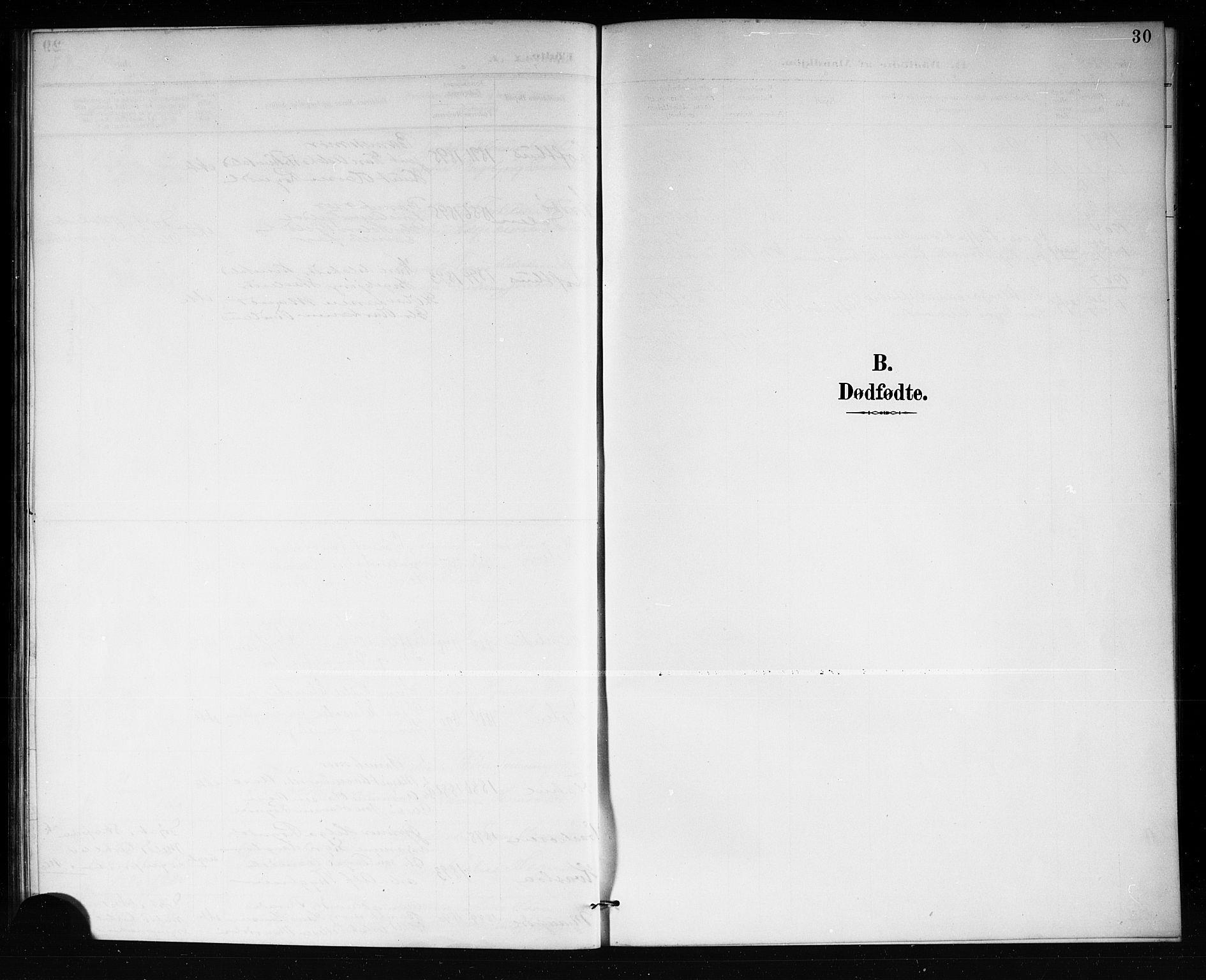 SAKO, Lårdal kirkebøker, G/Gb/L0003: Klokkerbok nr. II 3, 1889-1920, s. 30