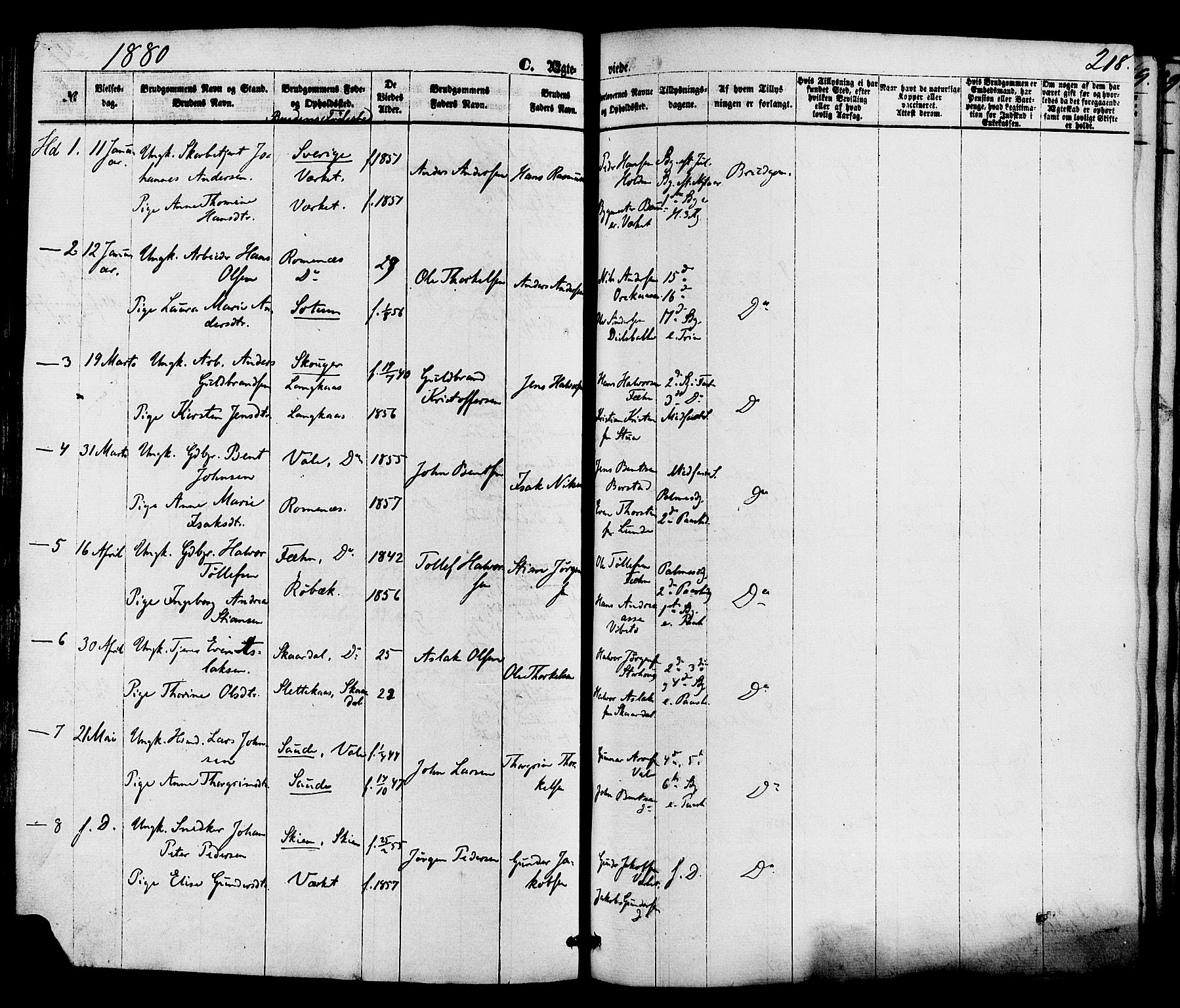 SAKO, Holla kirkebøker, F/Fa/L0007: Ministerialbok nr. 7, 1869-1881, s. 218
