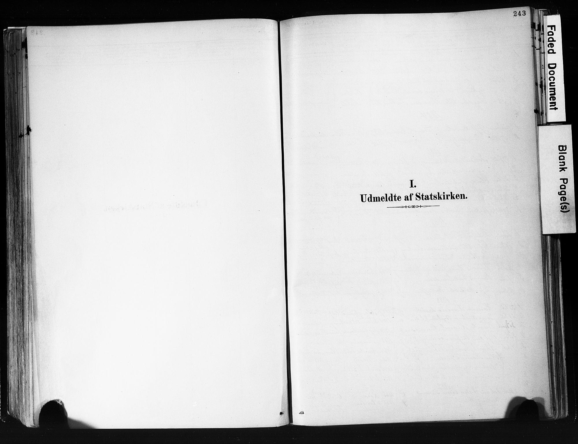 SAKO, Eidanger kirkebøker, F/Fa/L0012: Ministerialbok nr. 12, 1879-1900, s. 243
