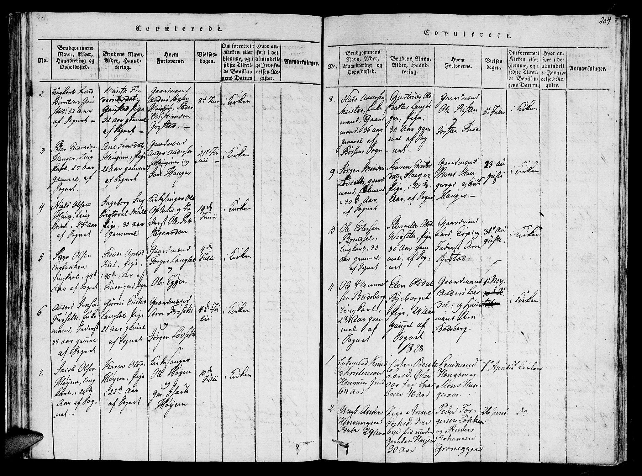 SAT, Ministerialprotokoller, klokkerbøker og fødselsregistre - Sør-Trøndelag, 612/L0372: Ministerialbok nr. 612A06 /1, 1816-1828, s. 204