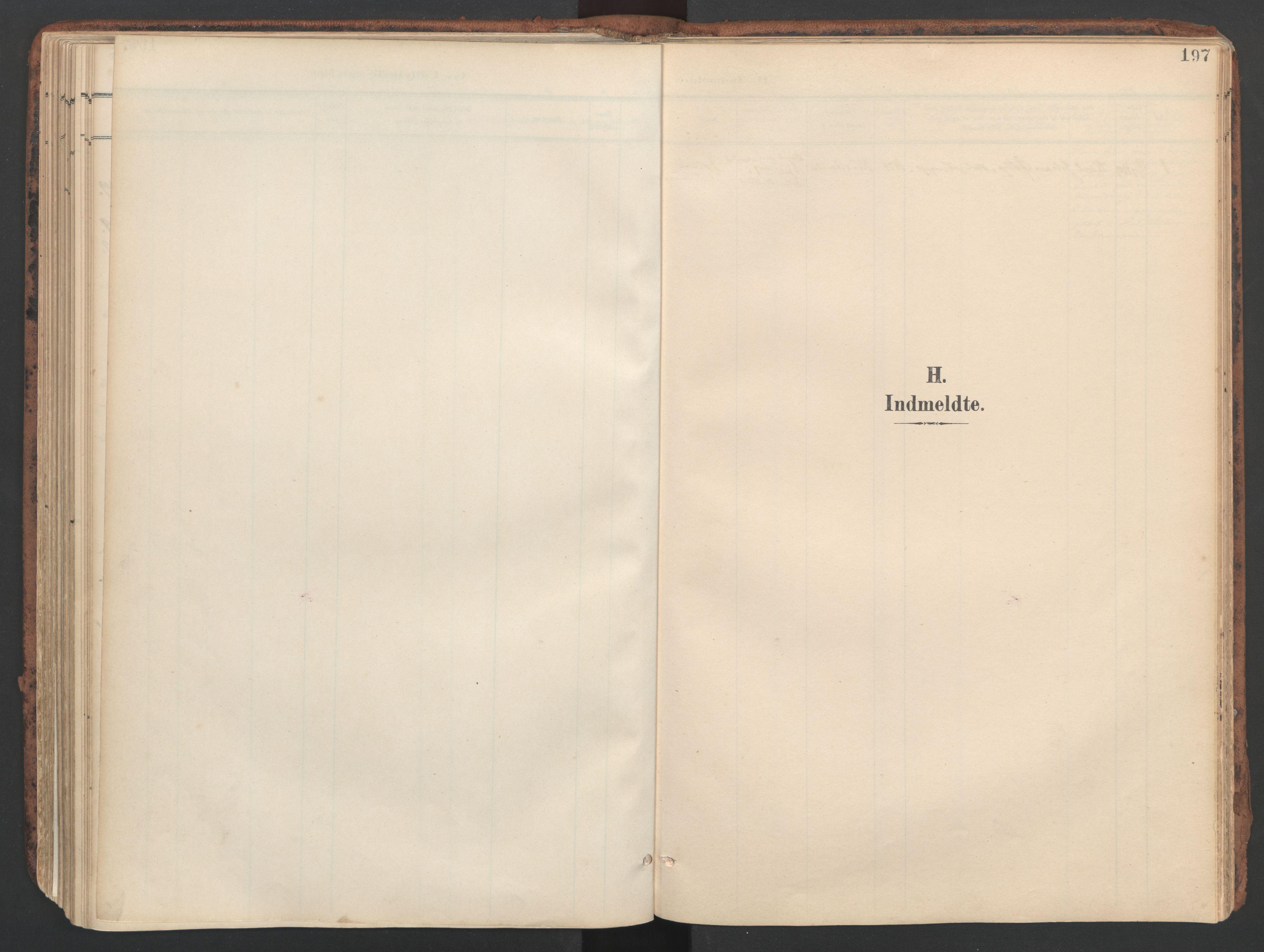 SAT, Ministerialprotokoller, klokkerbøker og fødselsregistre - Sør-Trøndelag, 634/L0537: Ministerialbok nr. 634A13, 1896-1922, s. 197