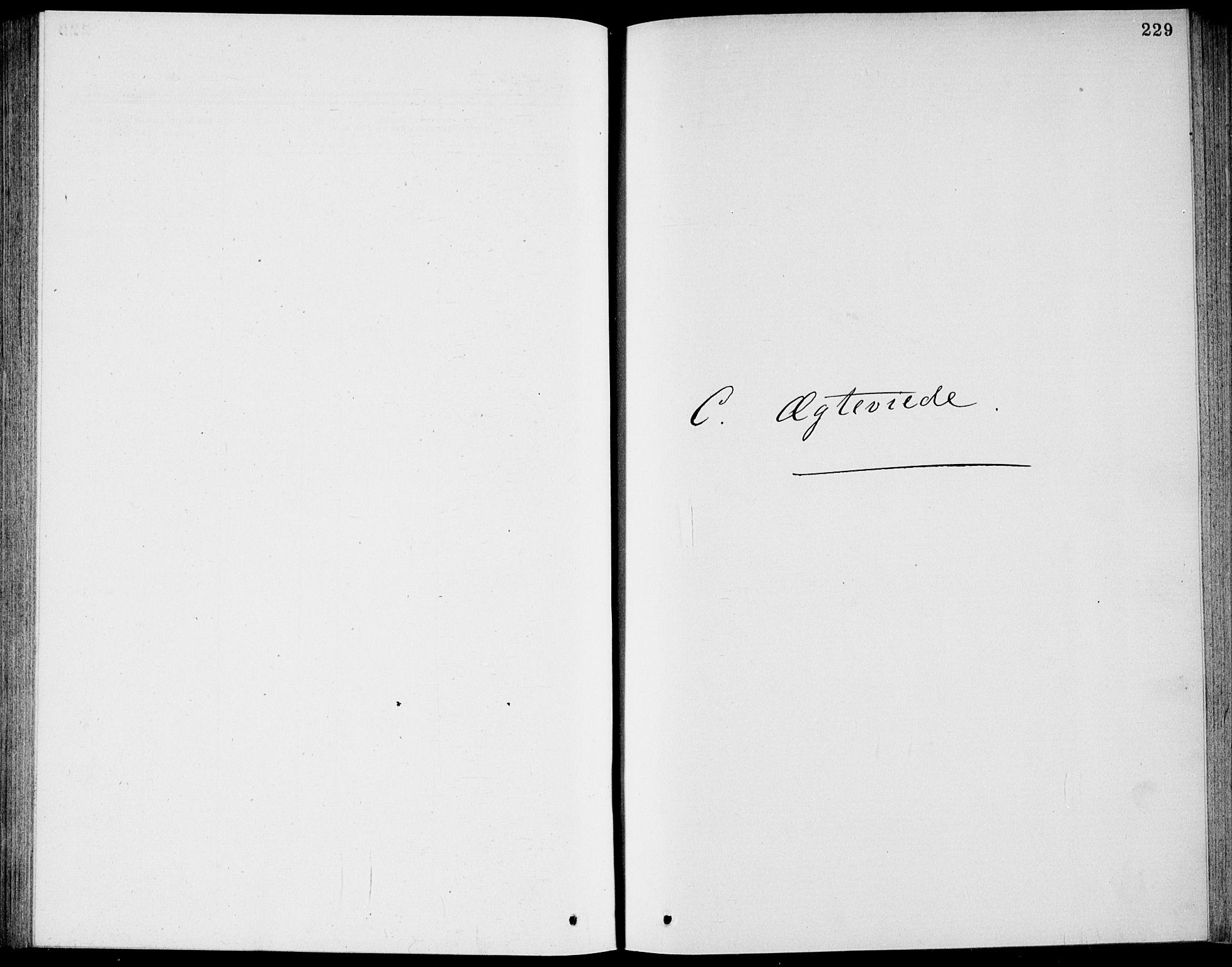 SAKO, Bamble kirkebøker, G/Ga/L0007: Klokkerbok nr. I 7, 1876-1877, s. 229