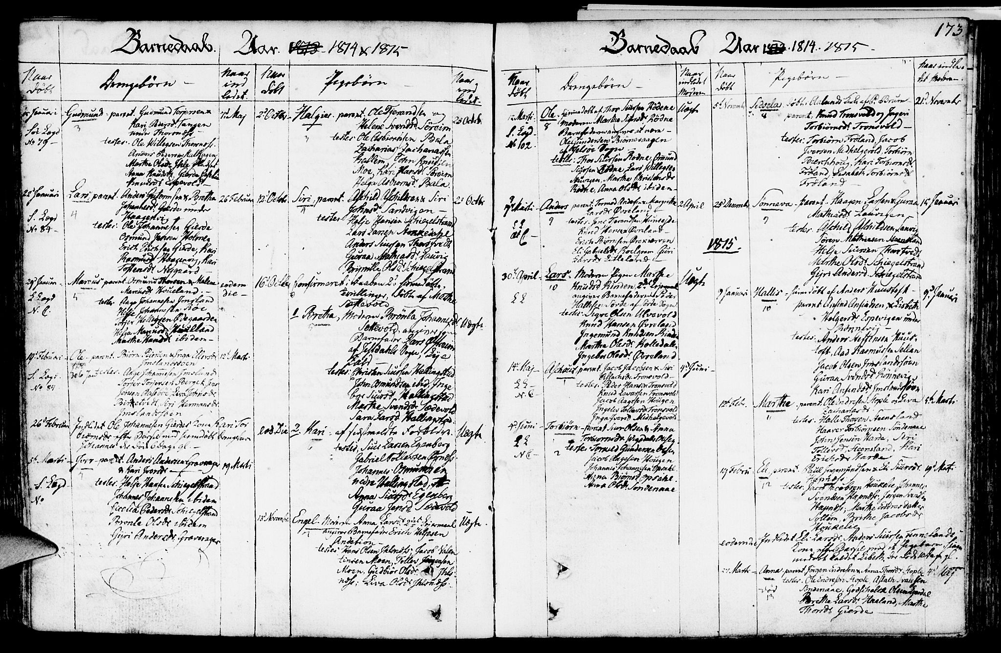 SAST, Vikedal sokneprestkontor, IV: Ministerialbok nr. A 2, 1779-1817, s. 173