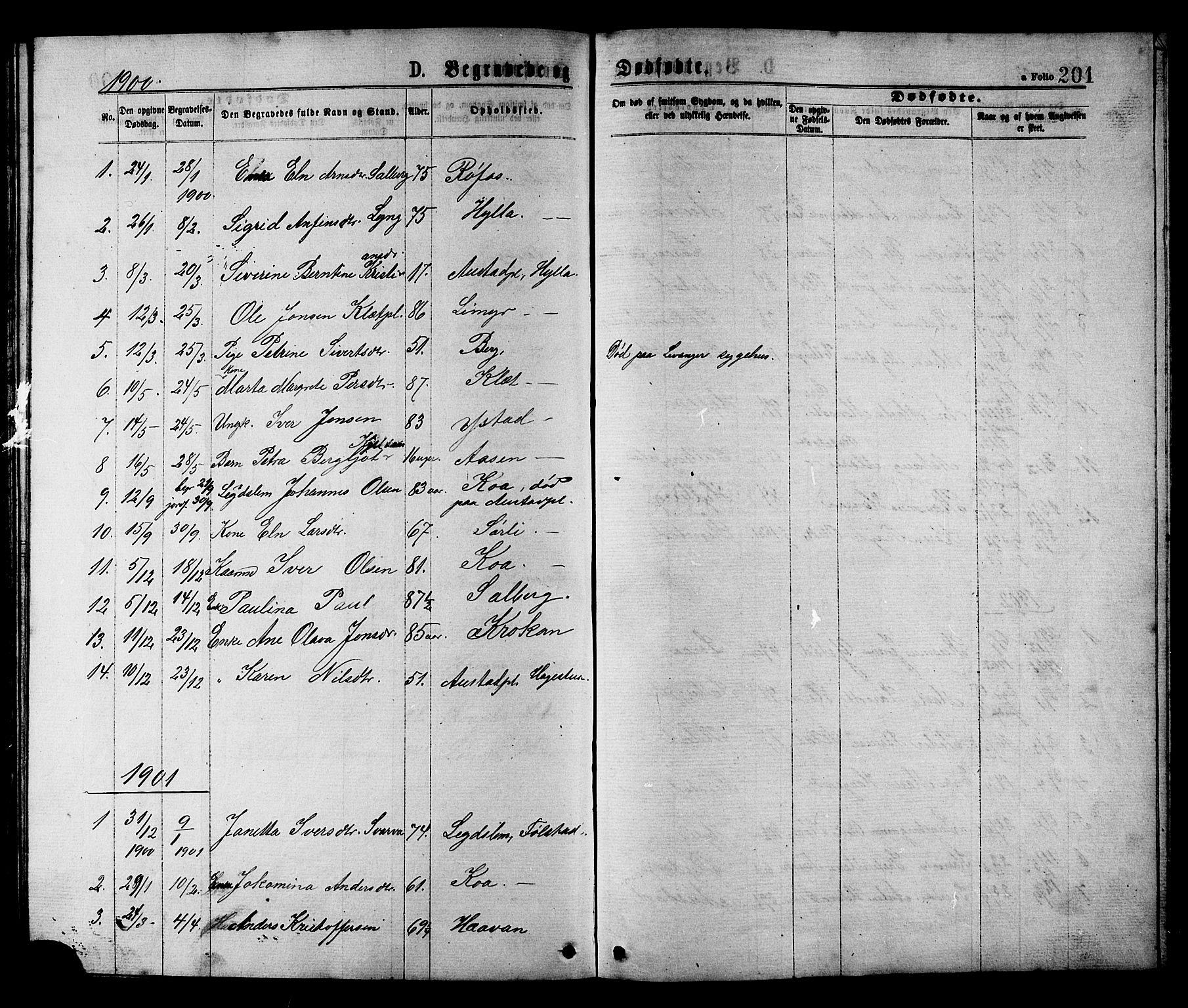 SAT, Ministerialprotokoller, klokkerbøker og fødselsregistre - Nord-Trøndelag, 731/L0311: Klokkerbok nr. 731C02, 1875-1911, s. 201