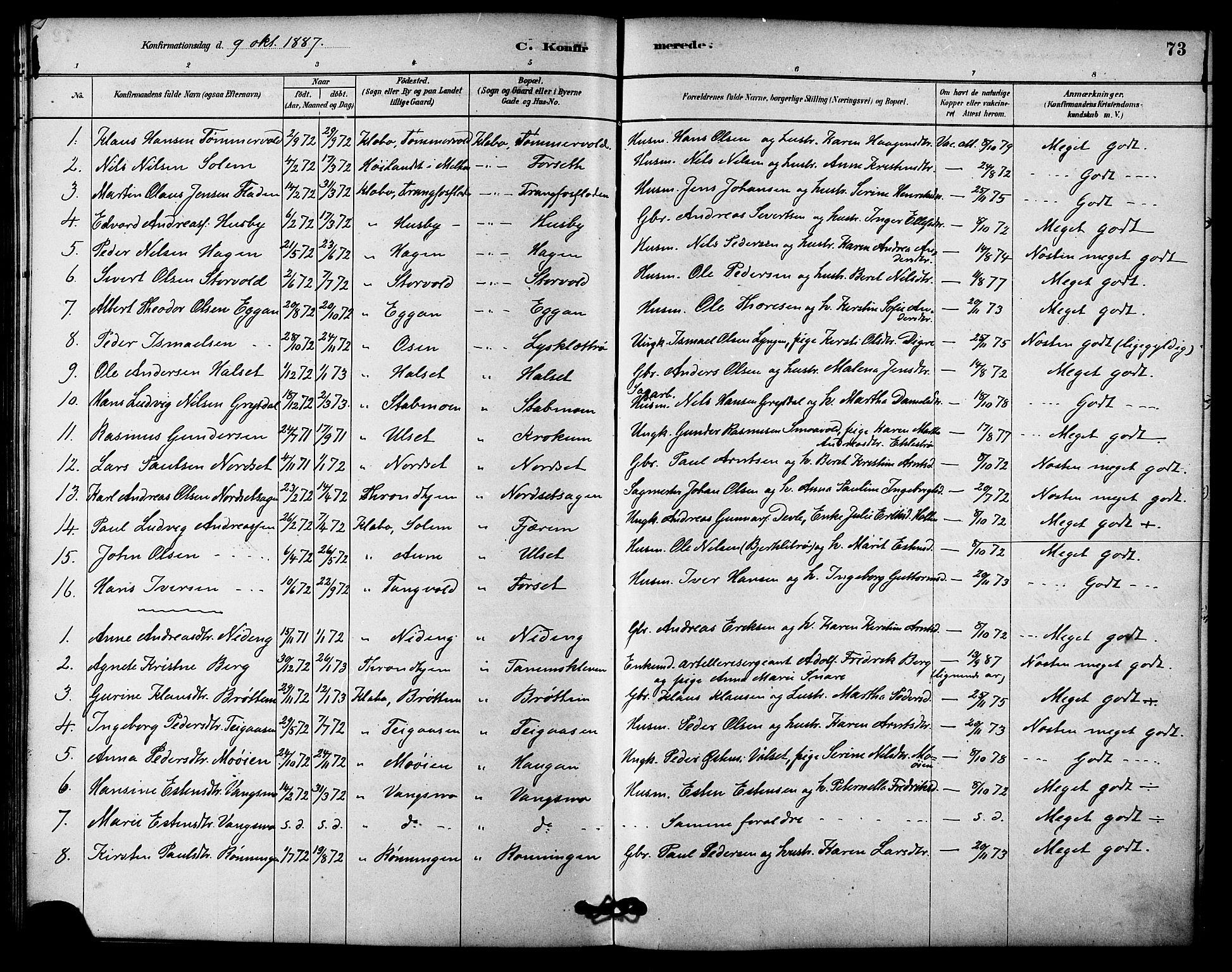 SAT, Ministerialprotokoller, klokkerbøker og fødselsregistre - Sør-Trøndelag, 618/L0444: Ministerialbok nr. 618A07, 1880-1898, s. 73