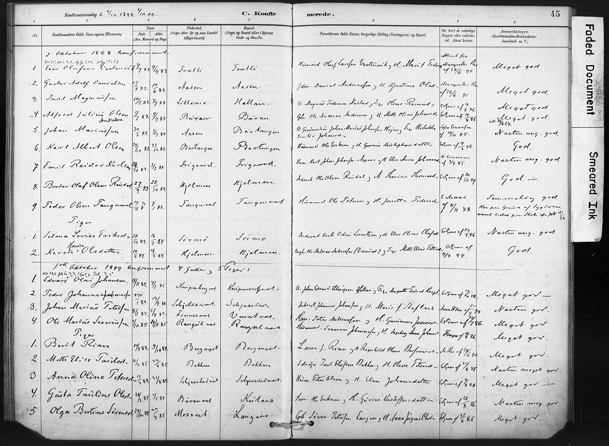 SAT, Ministerialprotokoller, klokkerbøker og fødselsregistre - Nord-Trøndelag, 718/L0175: Ministerialbok nr. 718A01, 1890-1923, s. 45