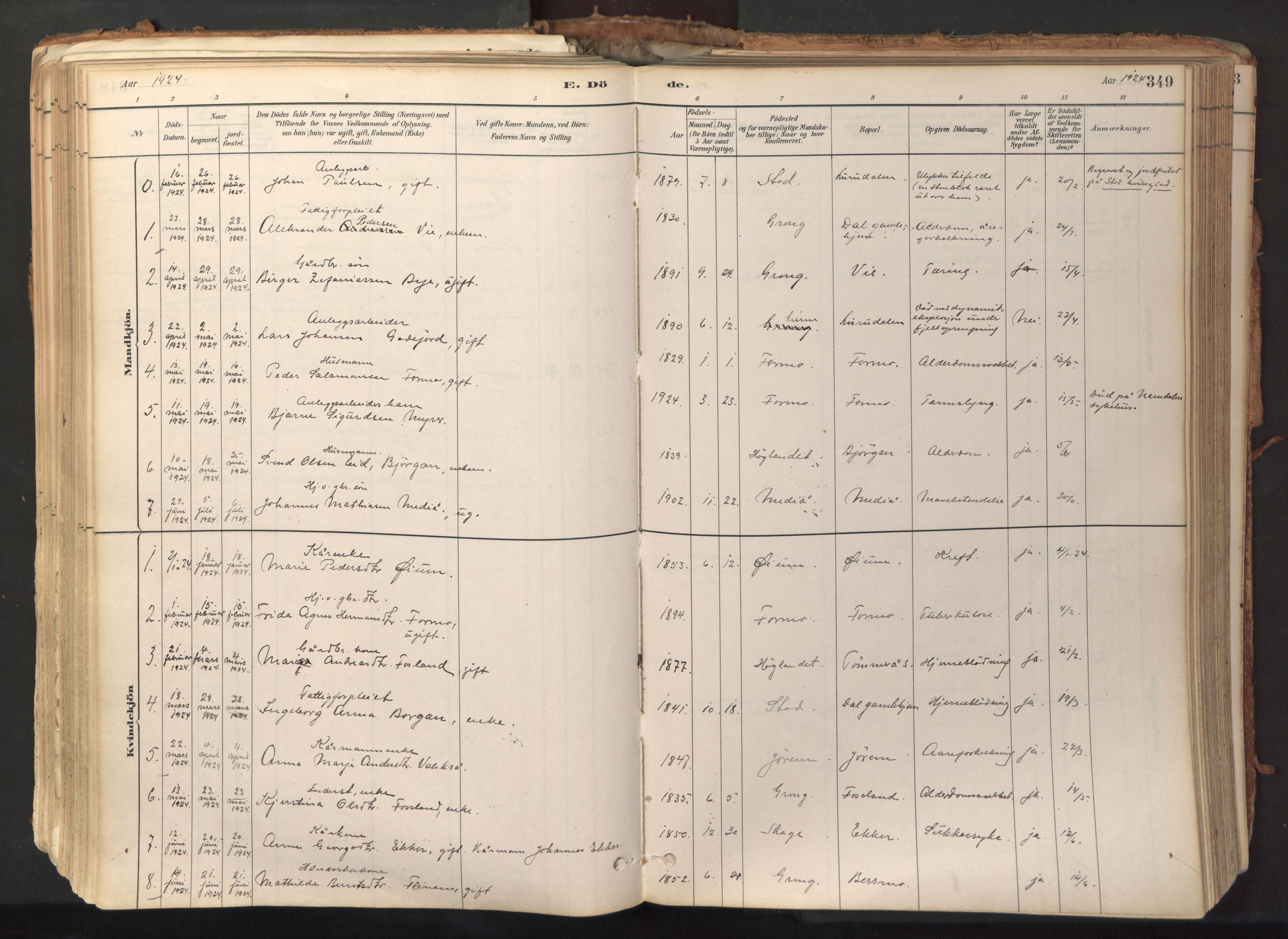 SAT, Ministerialprotokoller, klokkerbøker og fødselsregistre - Nord-Trøndelag, 758/L0519: Ministerialbok nr. 758A04, 1880-1926, s. 349