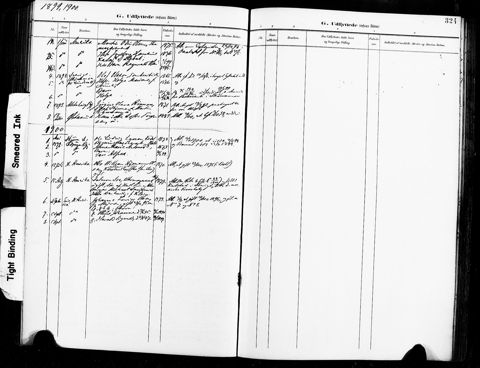 SAT, Ministerialprotokoller, klokkerbøker og fødselsregistre - Sør-Trøndelag, 604/L0198: Ministerialbok nr. 604A19, 1893-1900, s. 324