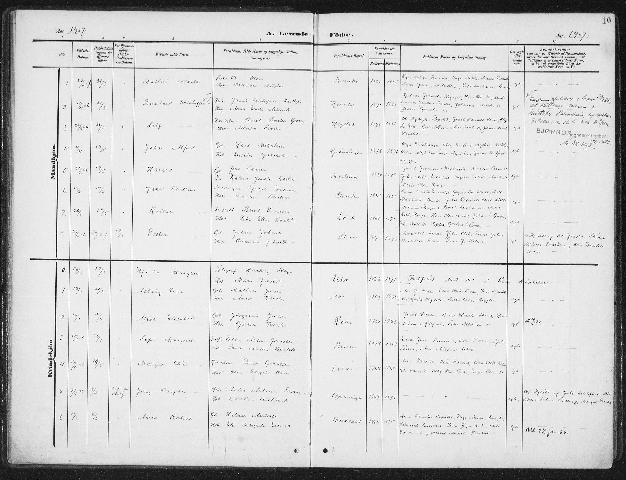SAT, Ministerialprotokoller, klokkerbøker og fødselsregistre - Sør-Trøndelag, 657/L0709: Ministerialbok nr. 657A10, 1905-1919, s. 10