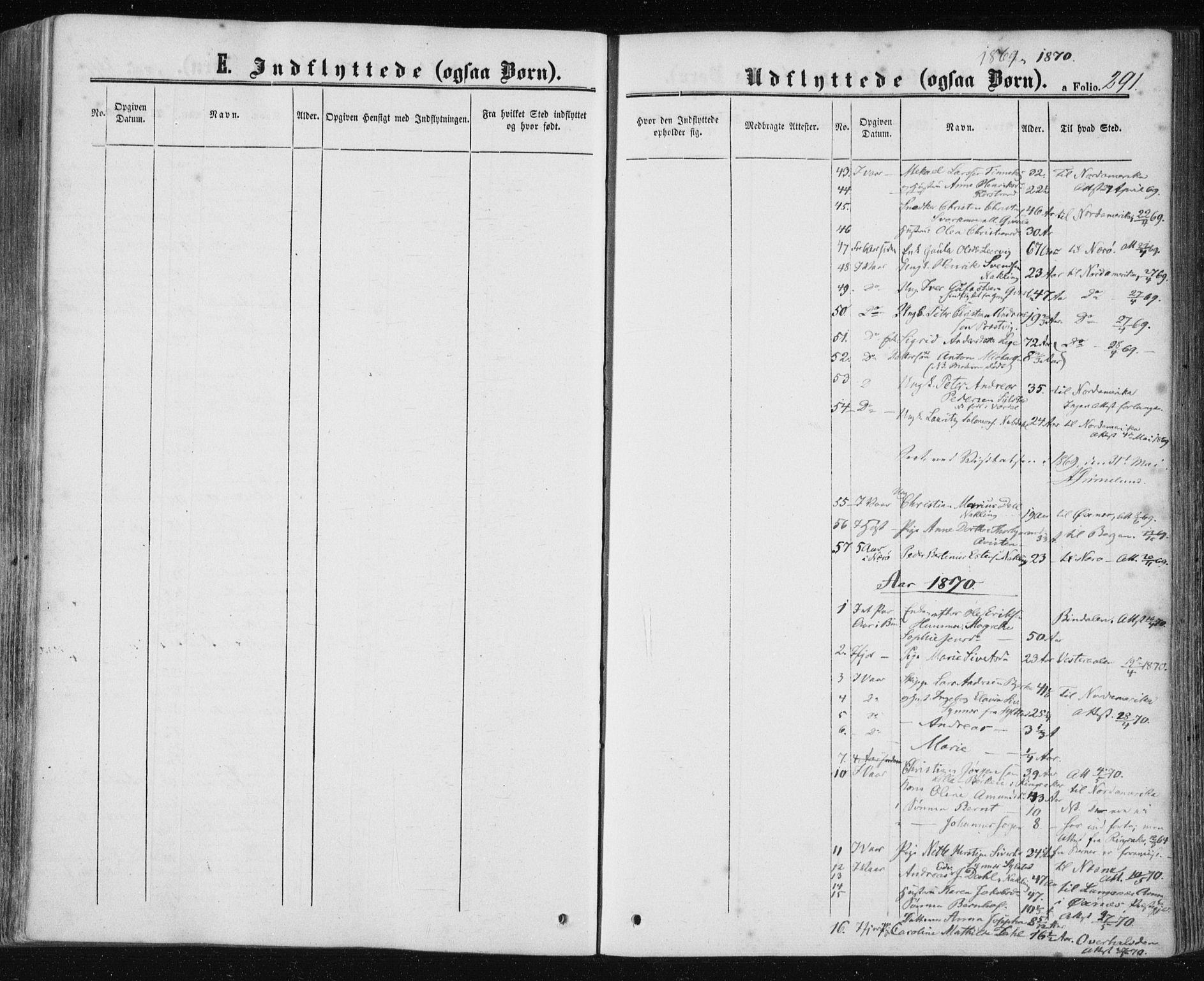 SAT, Ministerialprotokoller, klokkerbøker og fødselsregistre - Nord-Trøndelag, 780/L0641: Ministerialbok nr. 780A06, 1857-1874, s. 291