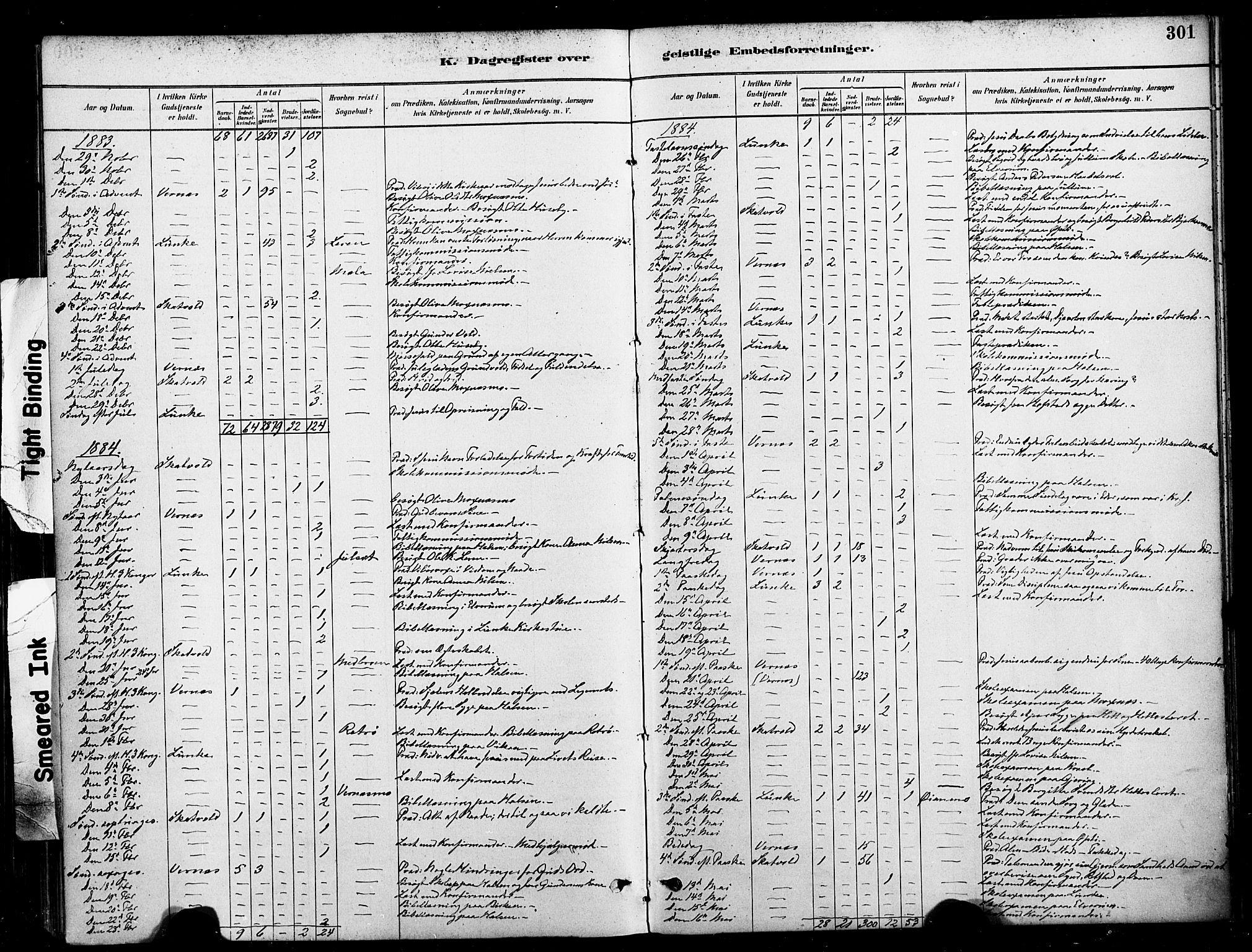 SAT, Ministerialprotokoller, klokkerbøker og fødselsregistre - Nord-Trøndelag, 709/L0077: Ministerialbok nr. 709A17, 1880-1895, s. 301