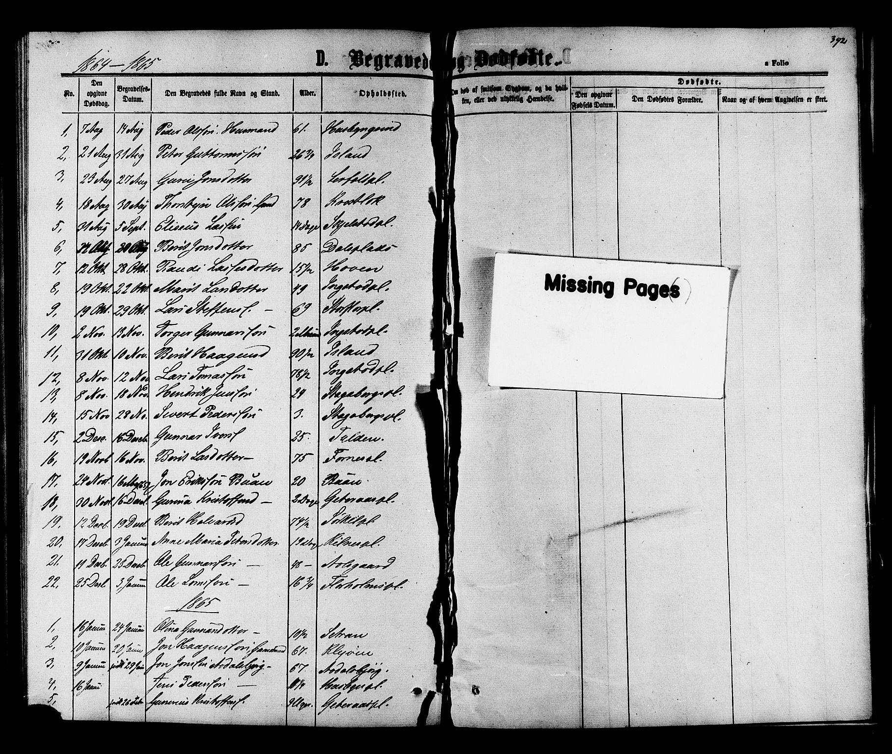SAT, Ministerialprotokoller, klokkerbøker og fødselsregistre - Nord-Trøndelag, 703/L0038: Klokkerbok nr. 703C01, 1864-1870, s. 392