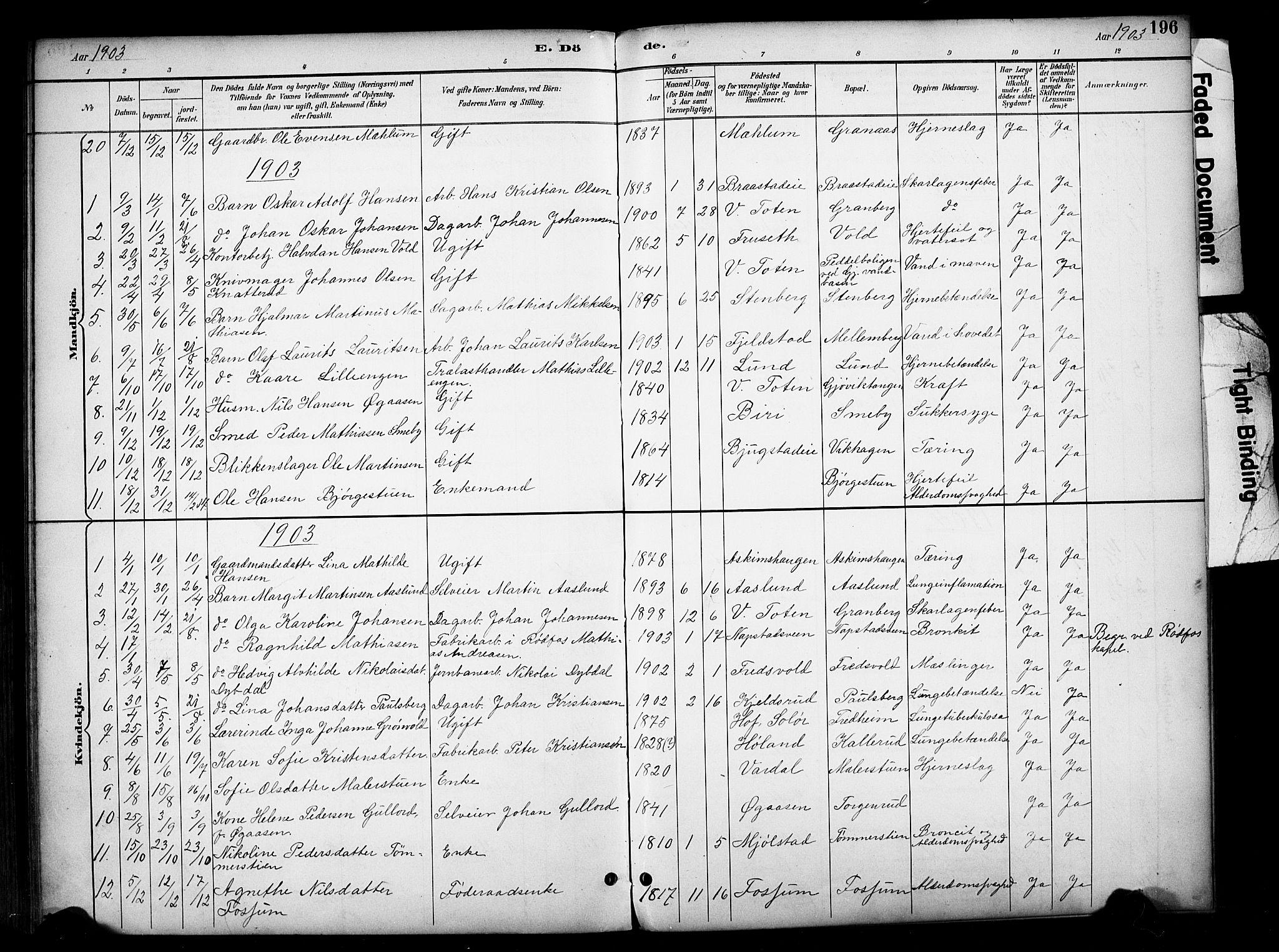 SAH, Vardal prestekontor, H/Ha/Haa/L0012: Ministerialbok nr. 12, 1893-1904, s. 196