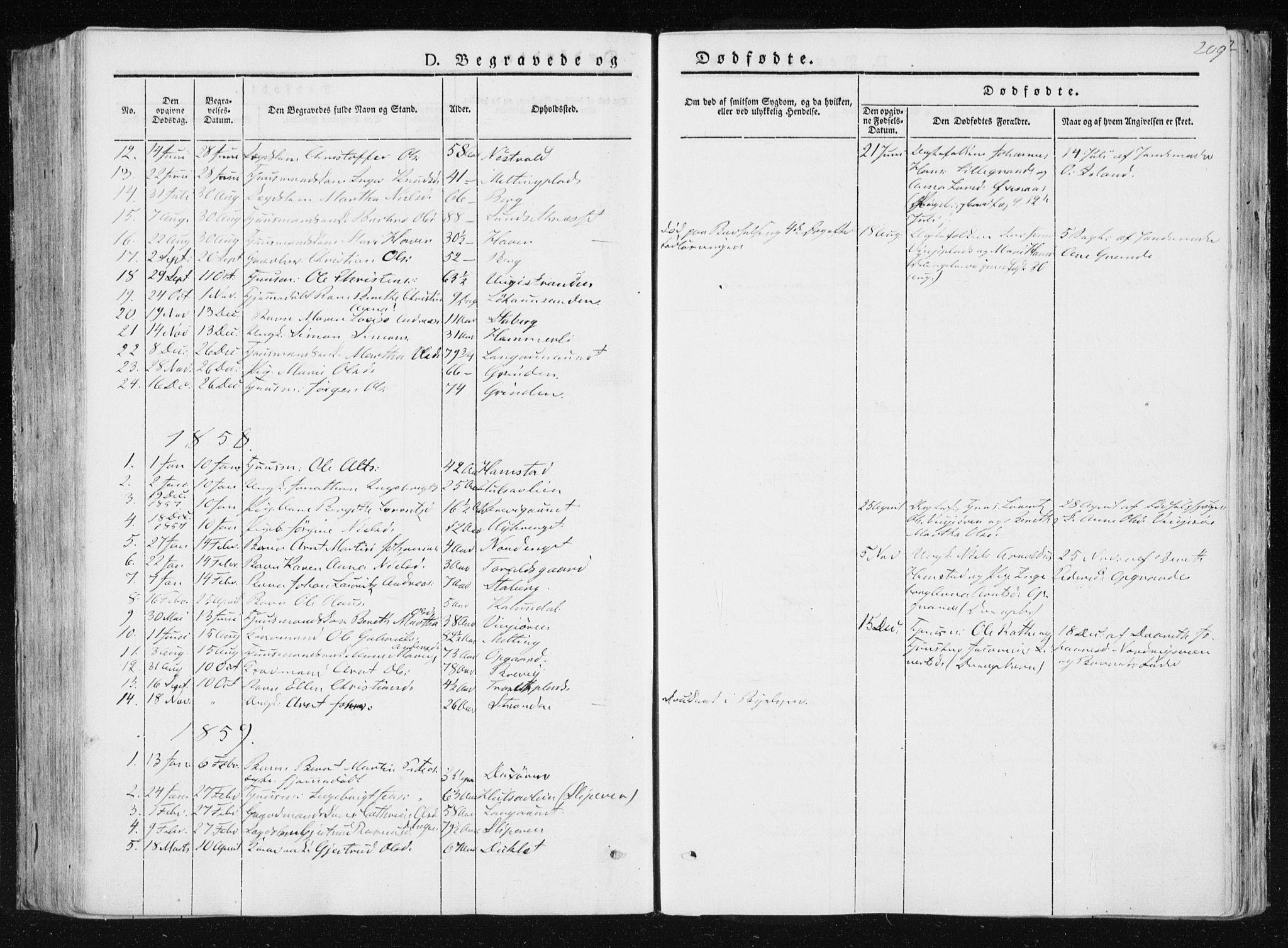 SAT, Ministerialprotokoller, klokkerbøker og fødselsregistre - Nord-Trøndelag, 733/L0323: Ministerialbok nr. 733A02, 1843-1870, s. 209
