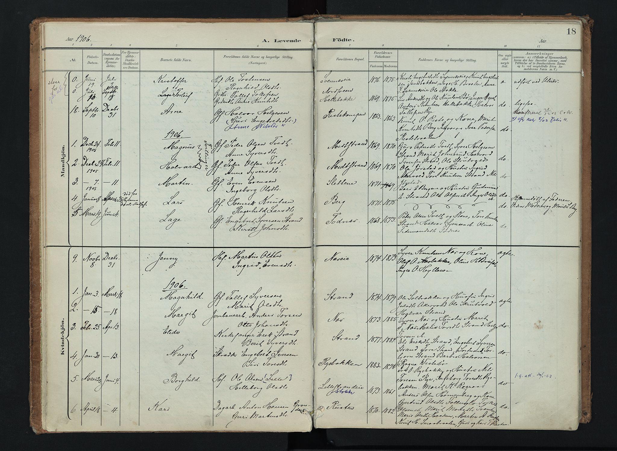 SAH, Nord-Aurdal prestekontor, Ministerialbok nr. 16, 1897-1925, s. 18