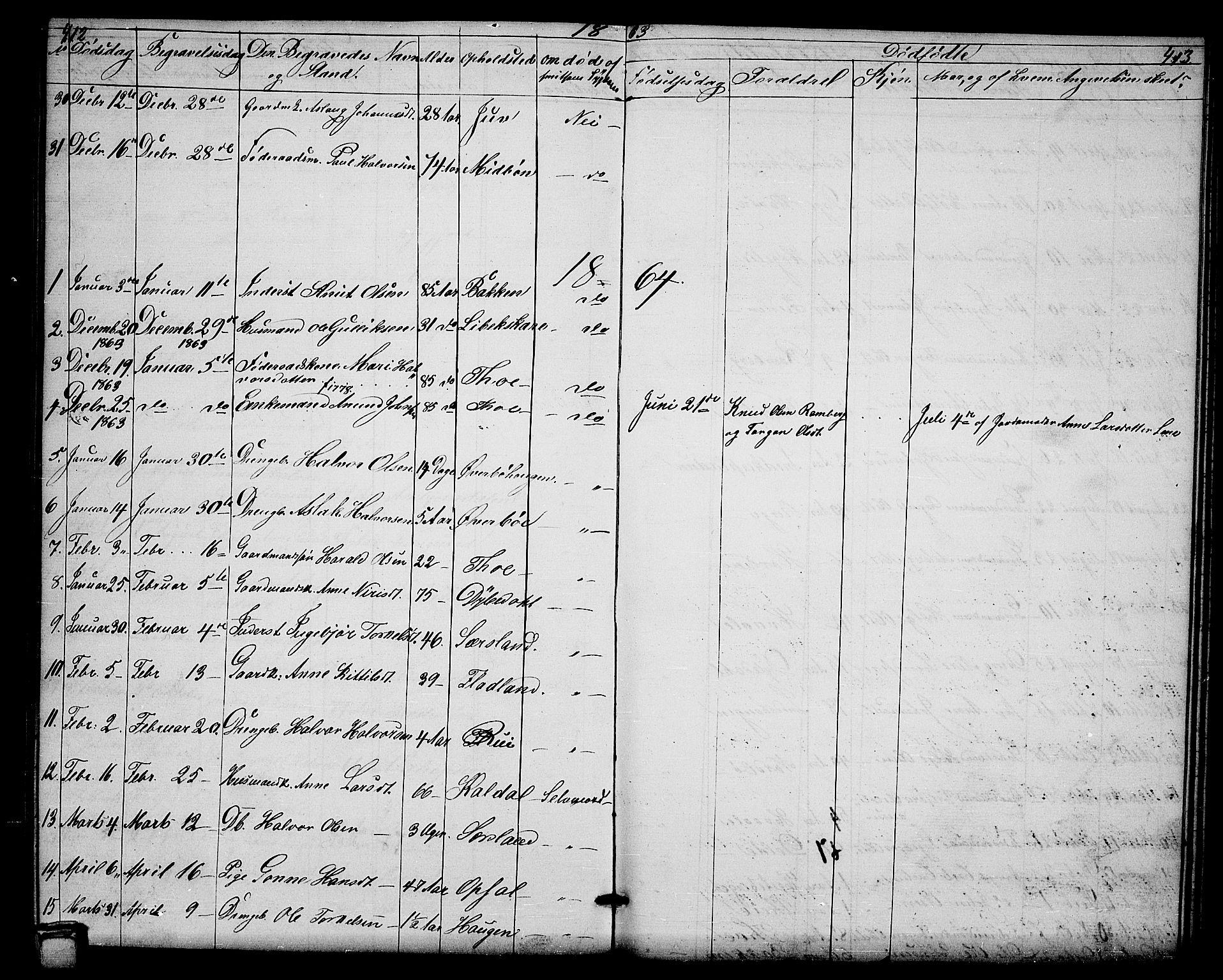 SAKO, Hjartdal kirkebøker, G/Ga/L0002: Klokkerbok nr. I 2, 1854-1888, s. 412-413
