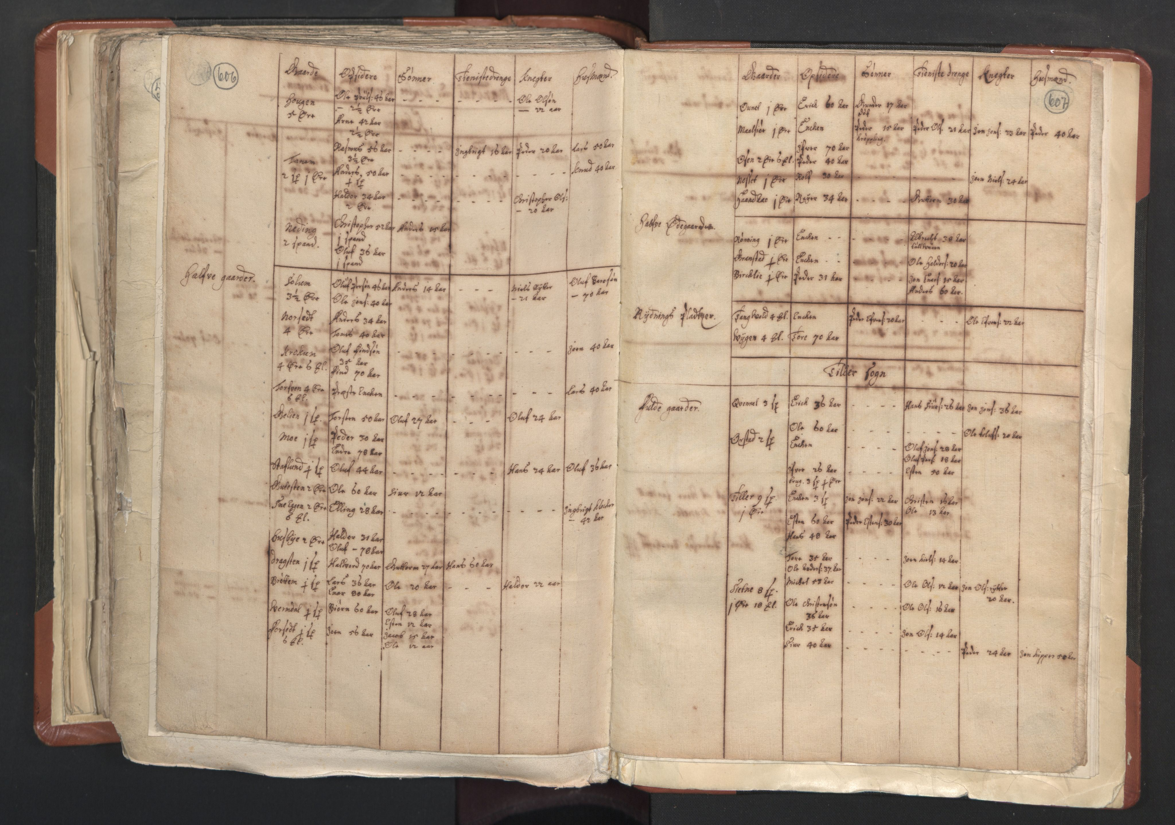 RA, Sogneprestenes manntall 1664-1666, nr. 31: Dalane prosti, 1664-1666, s. 606-607
