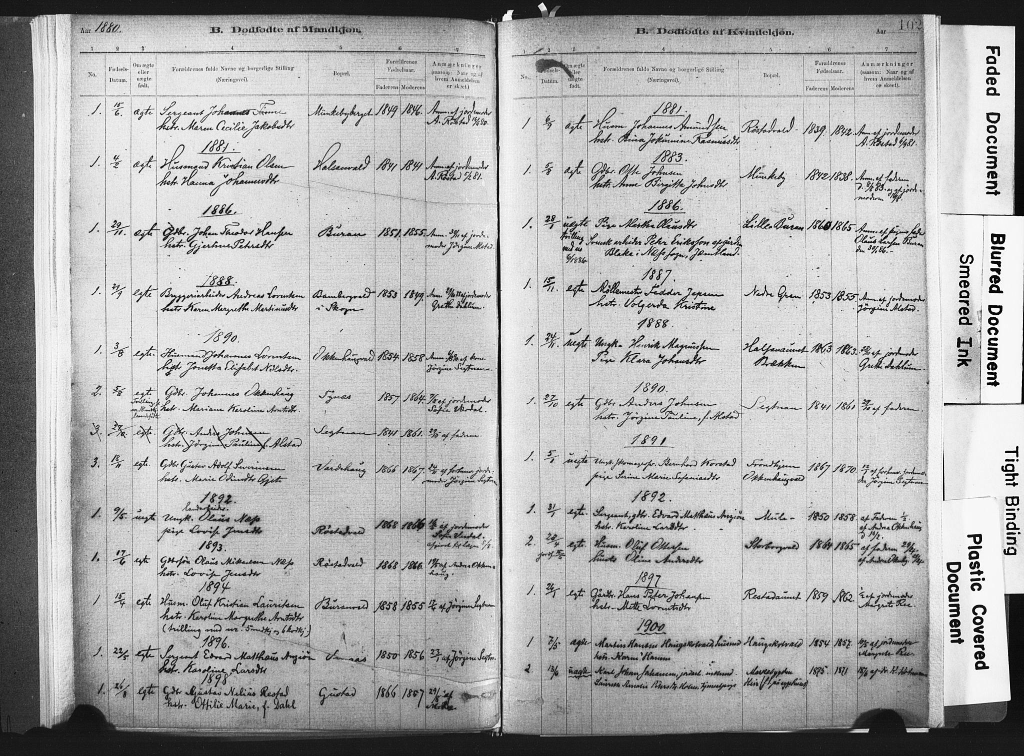 SAT, Ministerialprotokoller, klokkerbøker og fødselsregistre - Nord-Trøndelag, 721/L0207: Ministerialbok nr. 721A02, 1880-1911, s. 102
