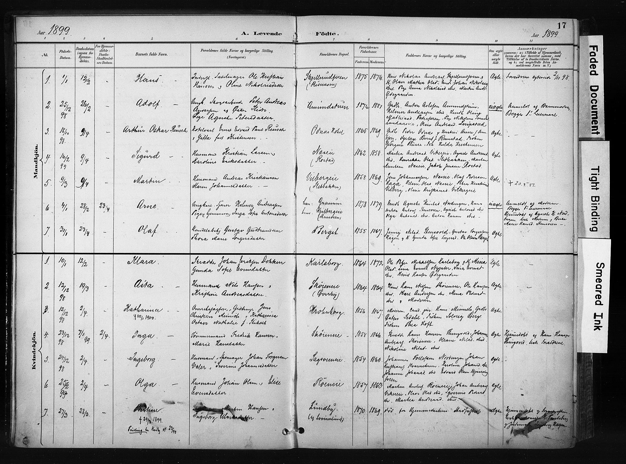 SAH, Søndre Land prestekontor, K/L0004: Ministerialbok nr. 4, 1895-1904, s. 17