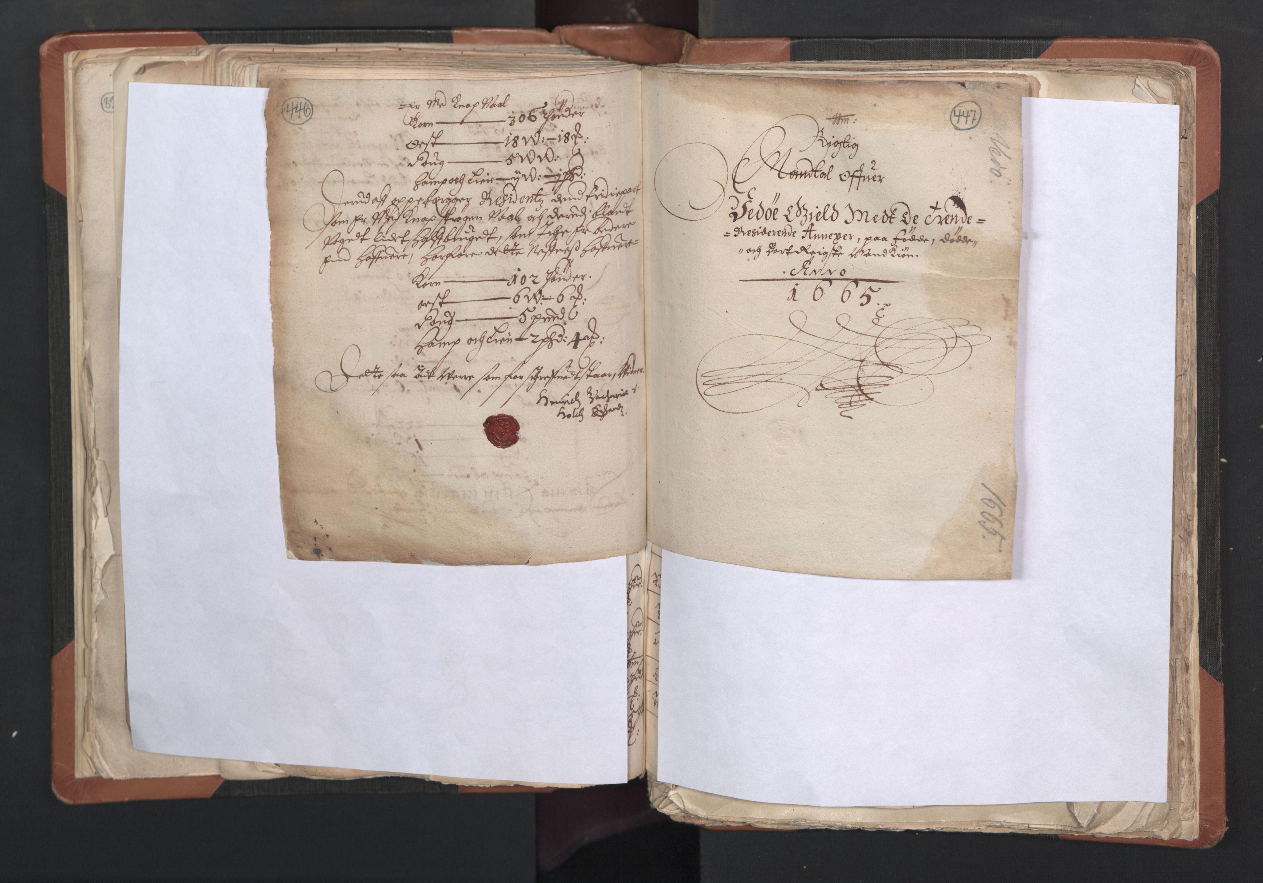 RA, Sogneprestenes manntall 1664-1666, nr. 27: Romsdal prosti, 1664-1666, s. 446-447
