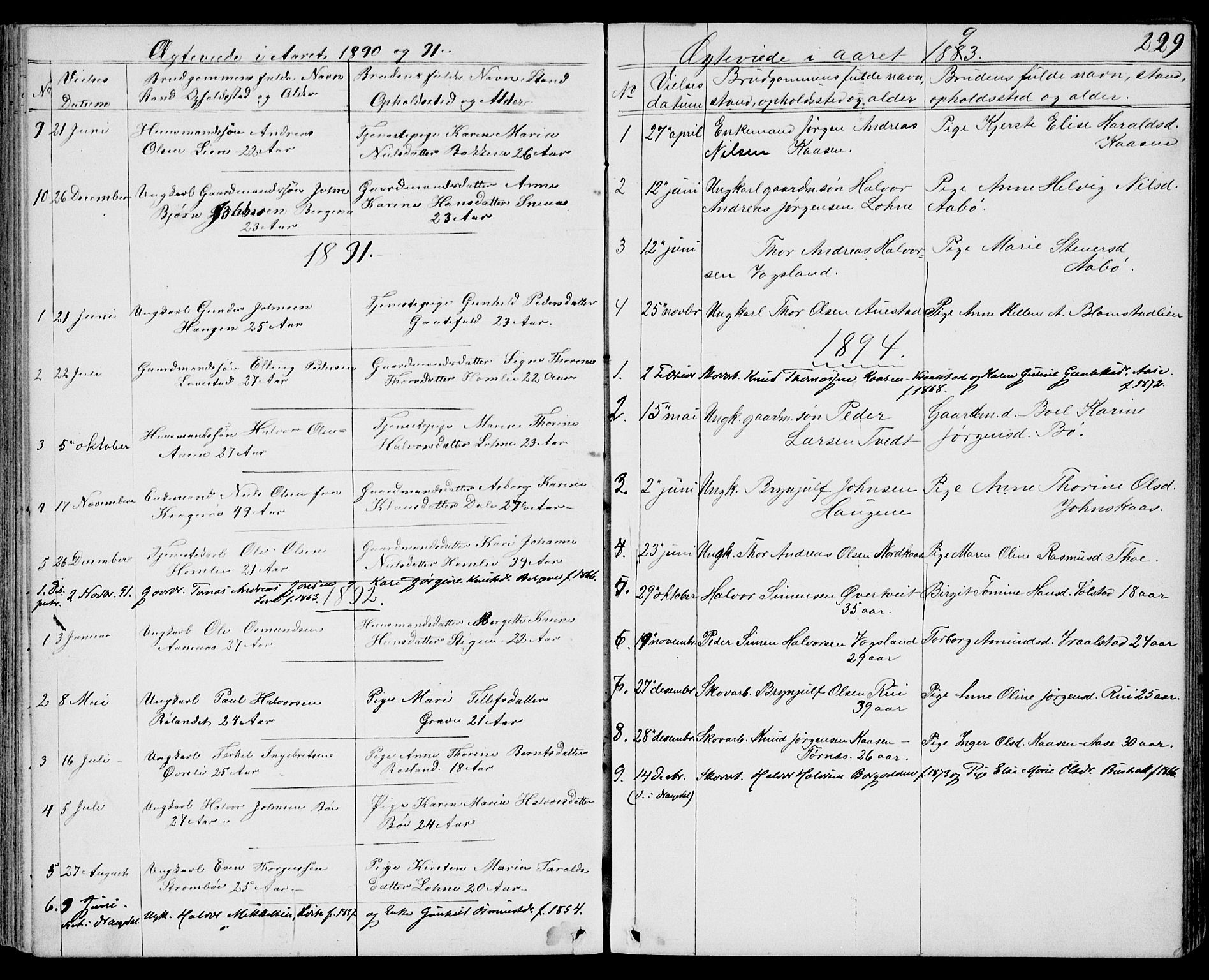SAKO, Drangedal kirkebøker, G/Gb/L0001: Klokkerbok nr. II 1, 1856-1894, s. 229