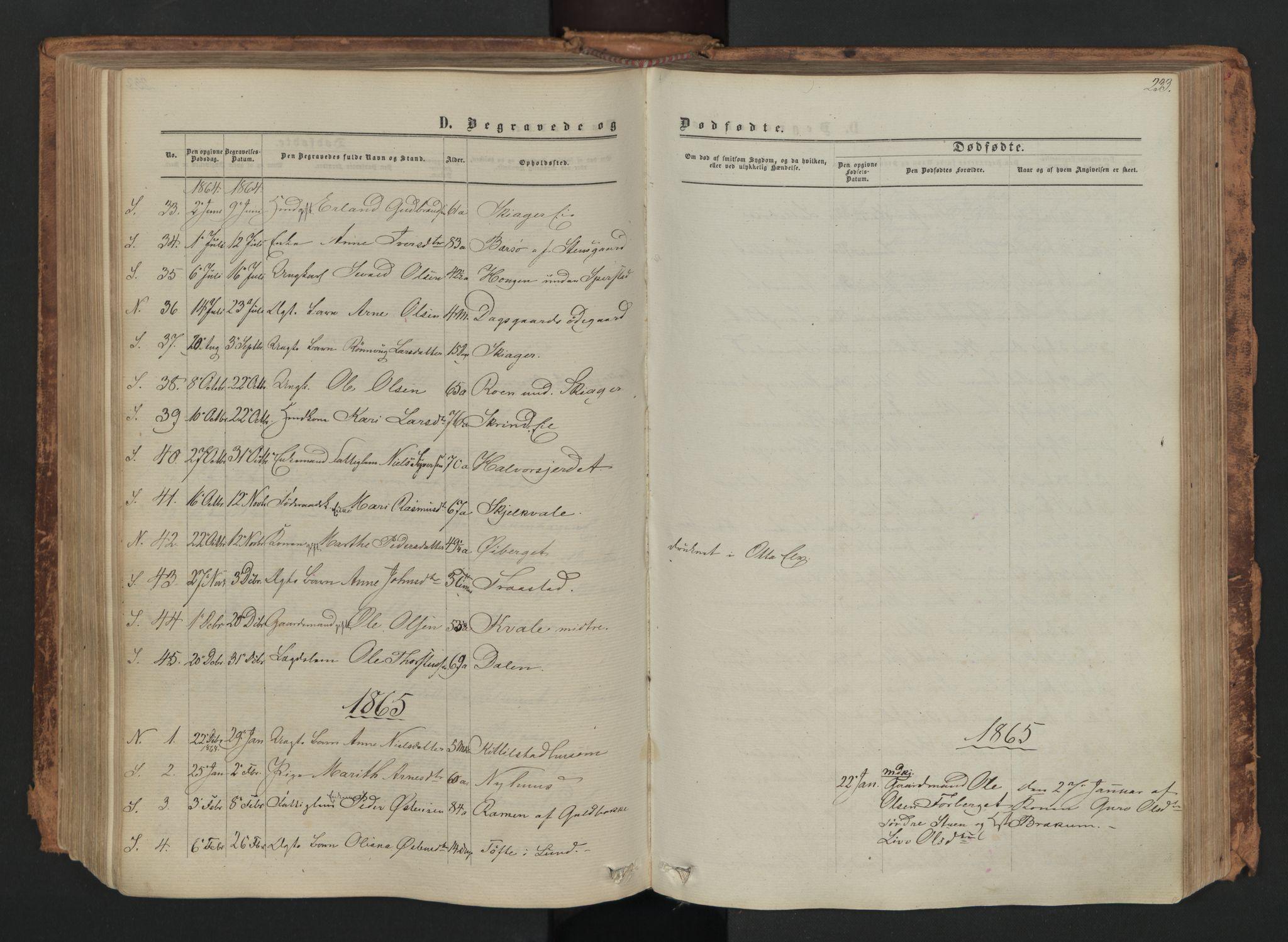 SAH, Skjåk prestekontor, Ministerialbok nr. 1, 1863-1879, s. 233