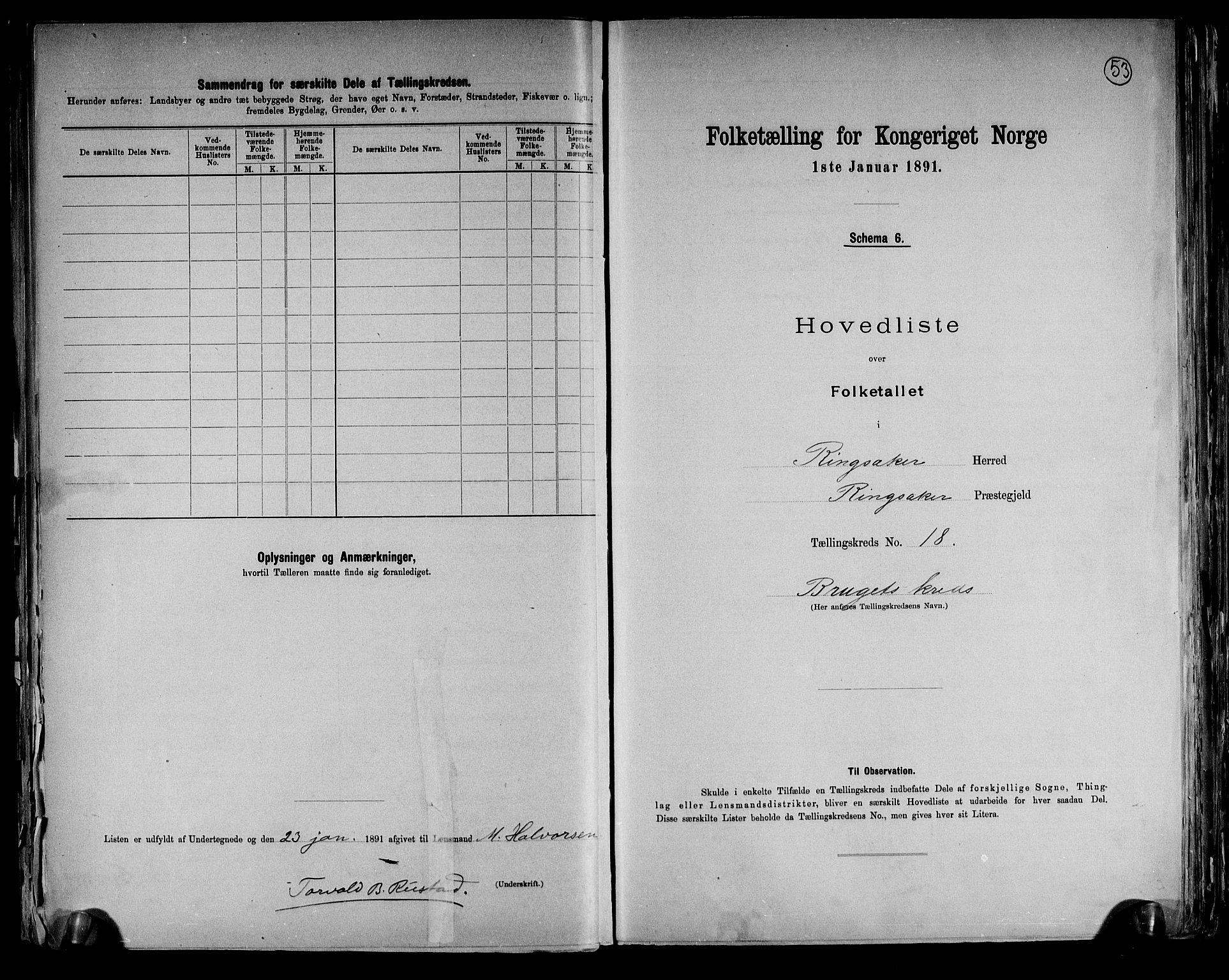 RA, Folketelling 1891 for 0412 Ringsaker herred, 1891, s. 53