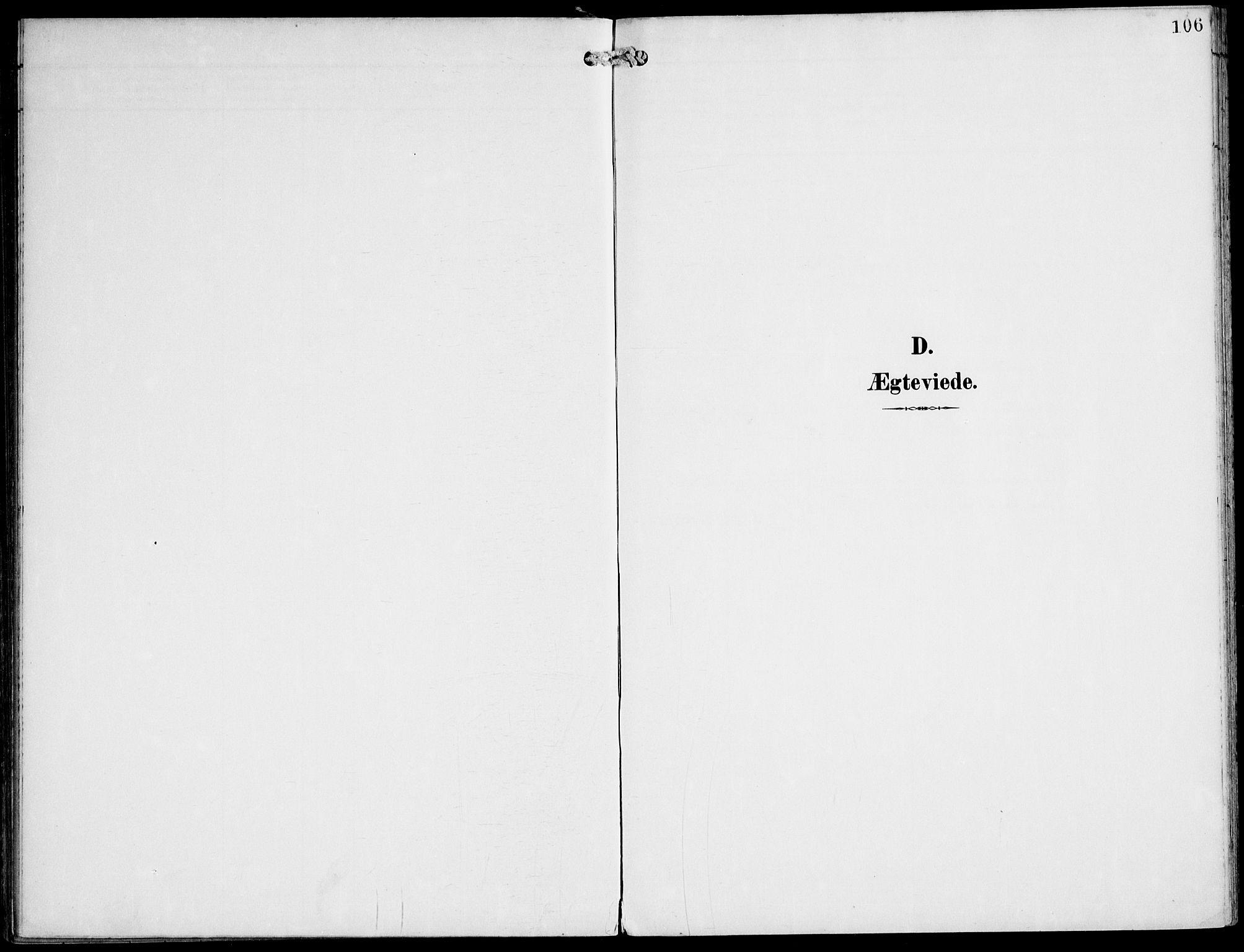 SAT, Ministerialprotokoller, klokkerbøker og fødselsregistre - Nord-Trøndelag, 745/L0430: Ministerialbok nr. 745A02, 1895-1913, s. 106