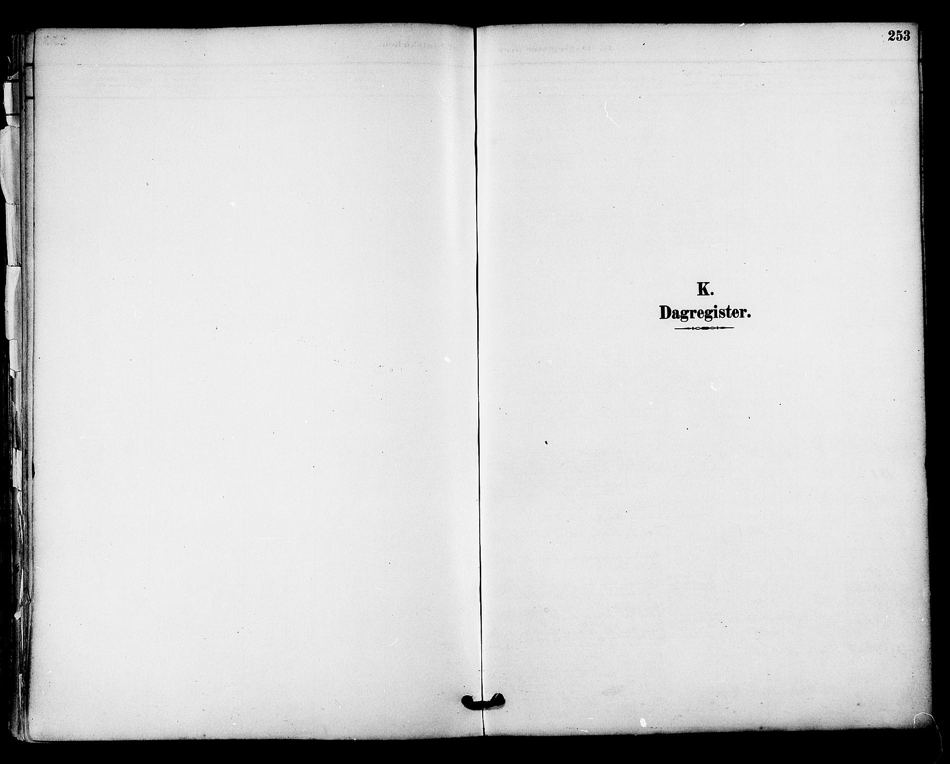 SAT, Ministerialprotokoller, klokkerbøker og fødselsregistre - Nordland, 813/L0200: Ministerialbok nr. 813A10, 1886-1900, s. 253