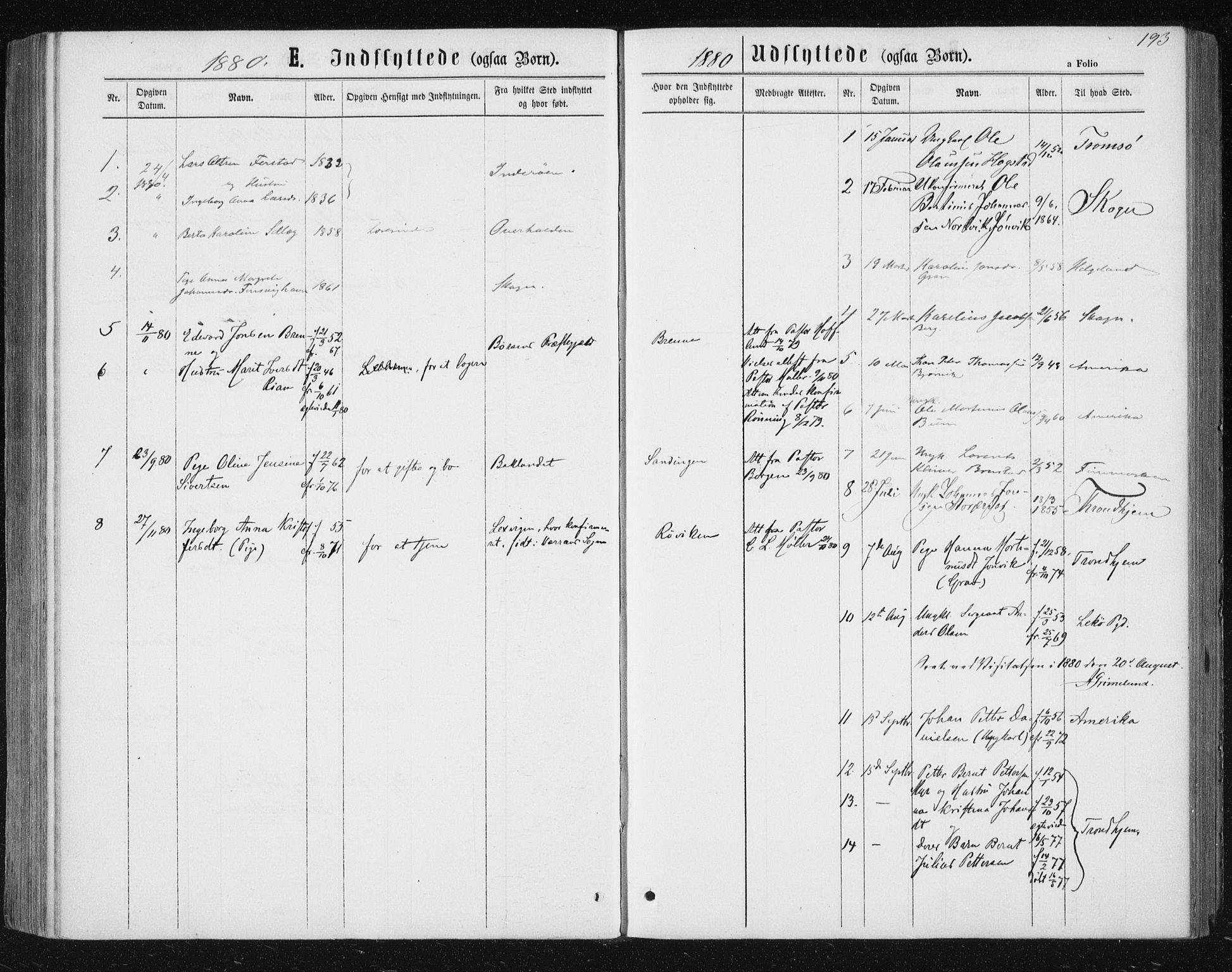 SAT, Ministerialprotokoller, klokkerbøker og fødselsregistre - Nord-Trøndelag, 722/L0219: Ministerialbok nr. 722A06, 1868-1880, s. 193