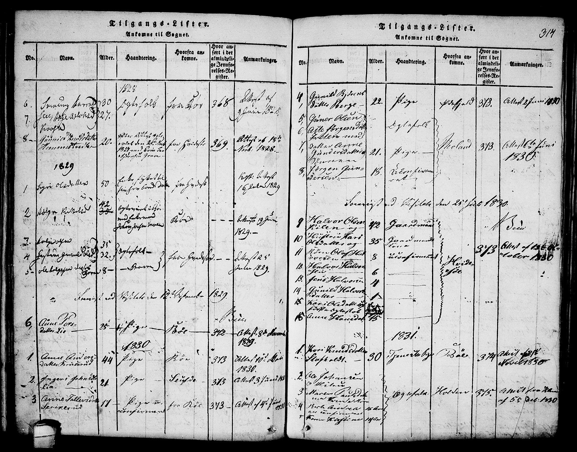 SAKO, Seljord kirkebøker, F/Fa/L0010: Ministerialbok nr. I 10, 1815-1831, s. 314
