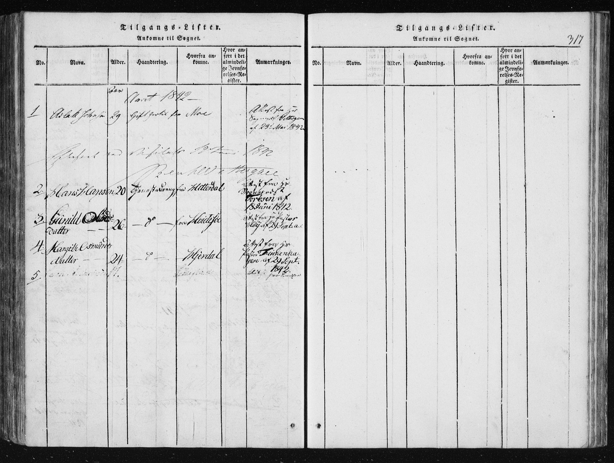 SAKO, Vinje kirkebøker, F/Fa/L0003: Ministerialbok nr. I 3, 1814-1843, s. 317