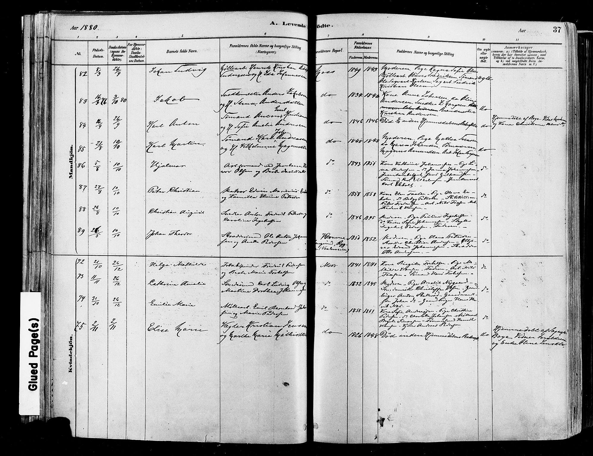 SAO, Moss prestekontor Kirkebøker, F/Fb/Fab/L0001: Ministerialbok nr. II 1, 1878-1886, s. 37