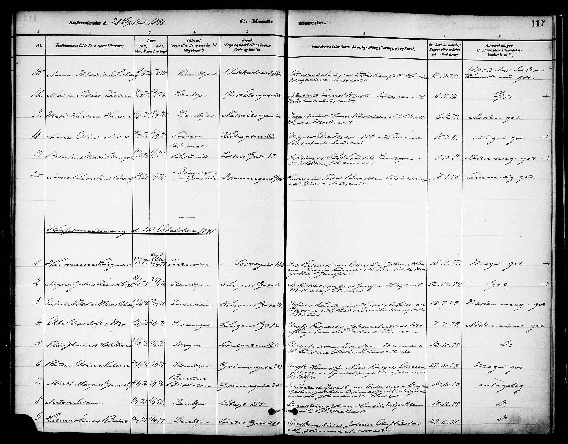 SAT, Ministerialprotokoller, klokkerbøker og fødselsregistre - Nord-Trøndelag, 739/L0371: Ministerialbok nr. 739A03, 1881-1895, s. 117