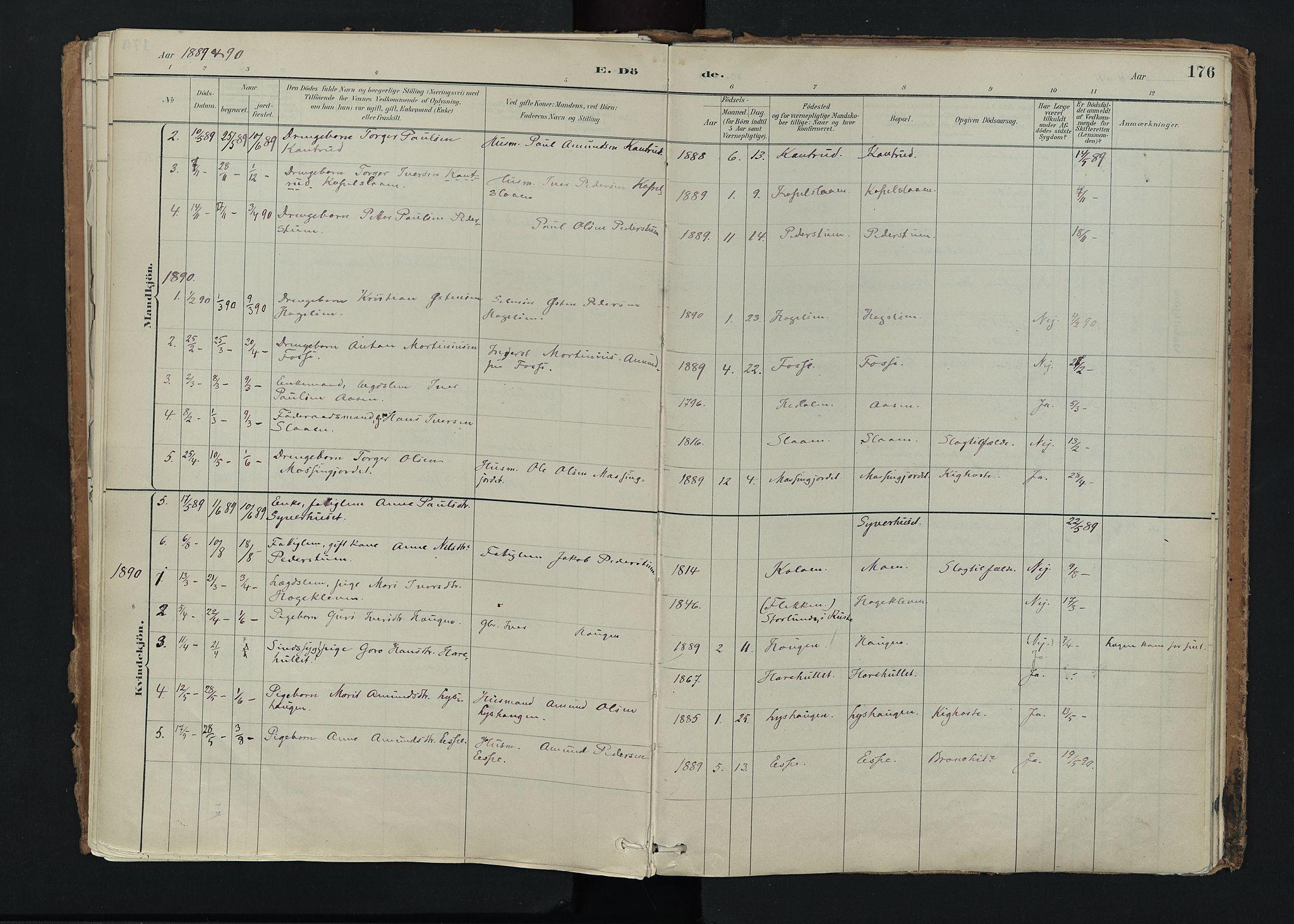 SAH, Nord-Fron prestekontor, Ministerialbok nr. 5, 1884-1914, s. 176