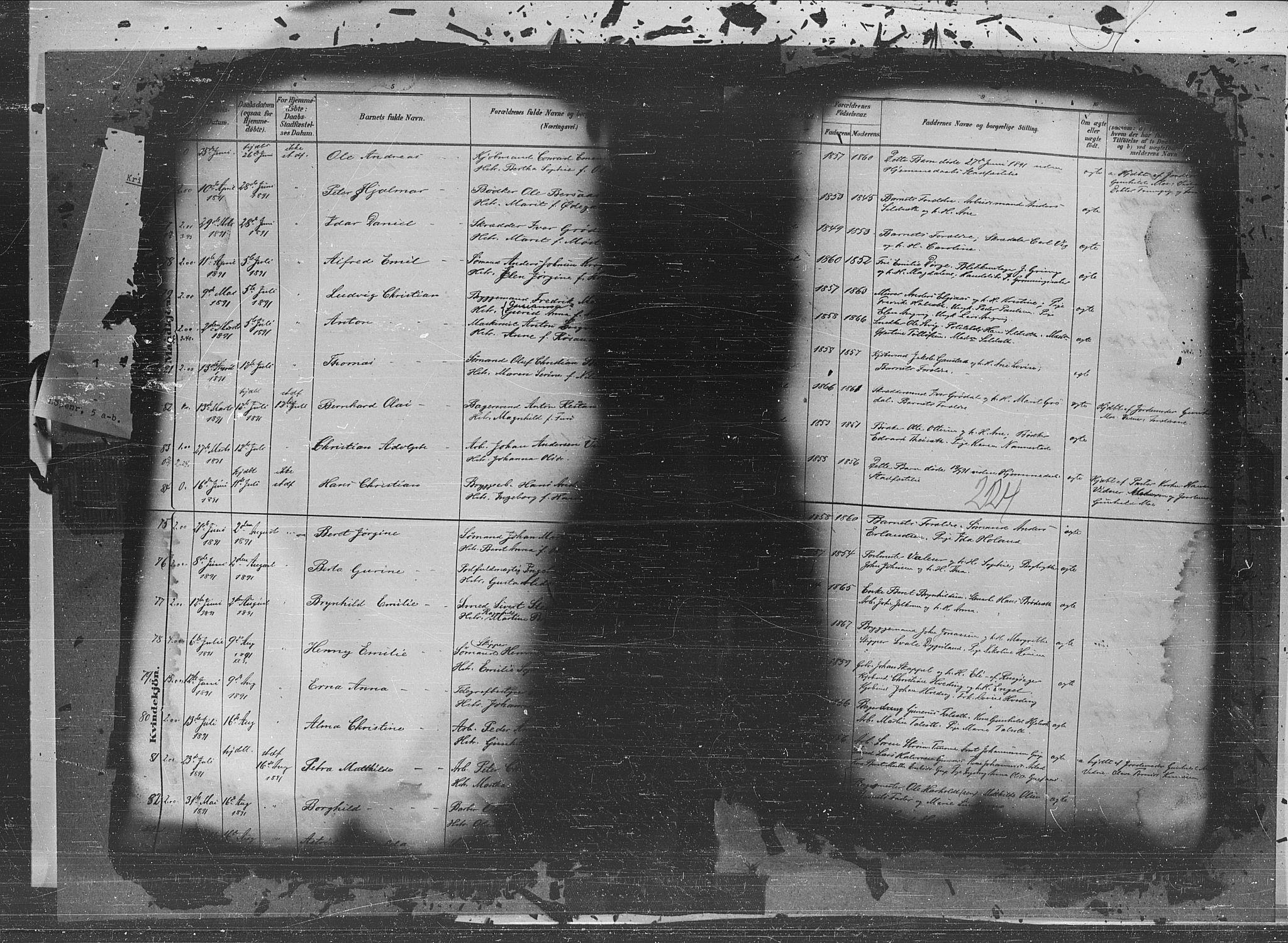 SAT, Ministerialprotokoller, klokkerbøker og fødselsregistre - Møre og Romsdal, 572/L0851: Ministerialbok nr. 572A14, 1880-1897, s. 224