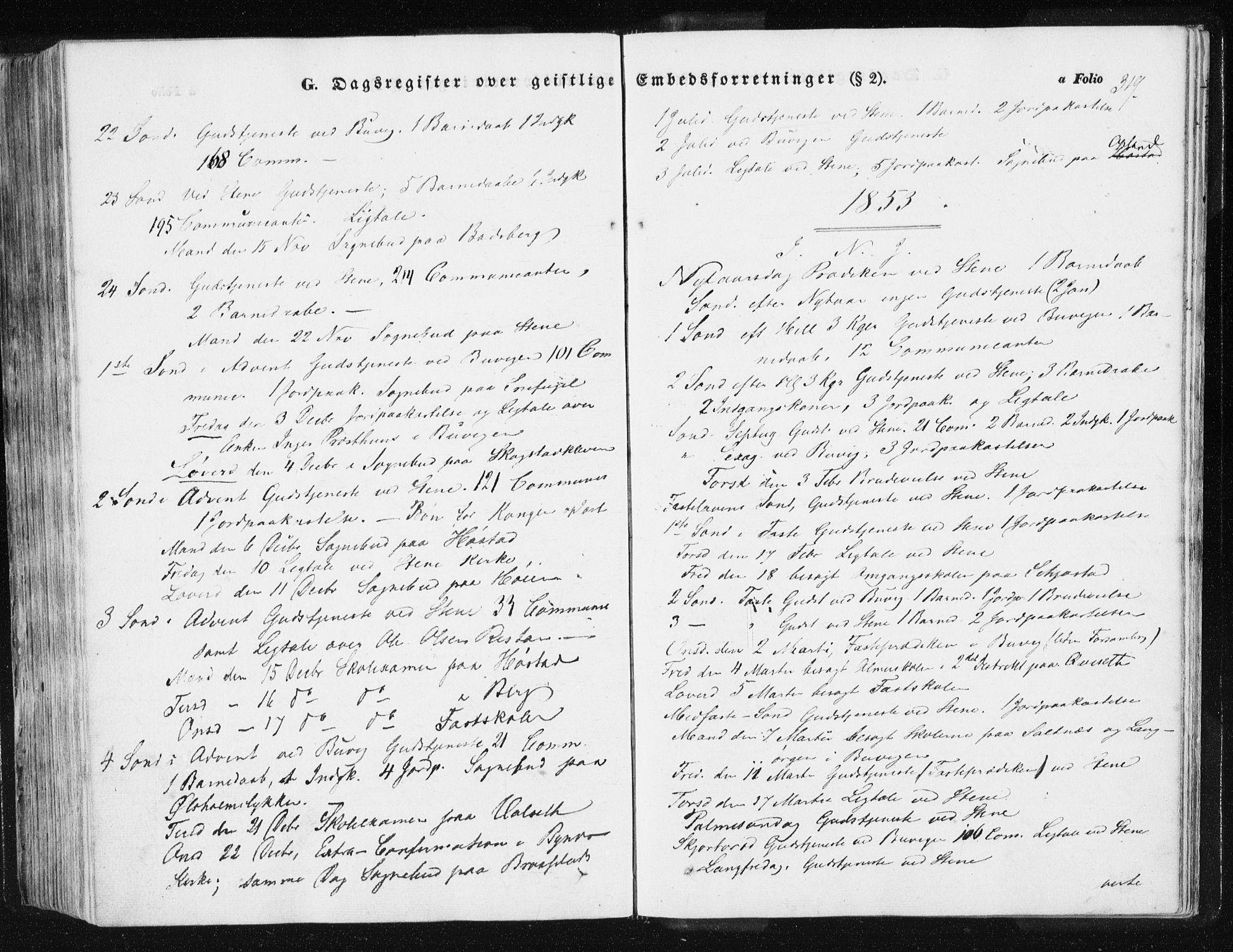 SAT, Ministerialprotokoller, klokkerbøker og fødselsregistre - Sør-Trøndelag, 612/L0376: Ministerialbok nr. 612A08, 1846-1859, s. 319
